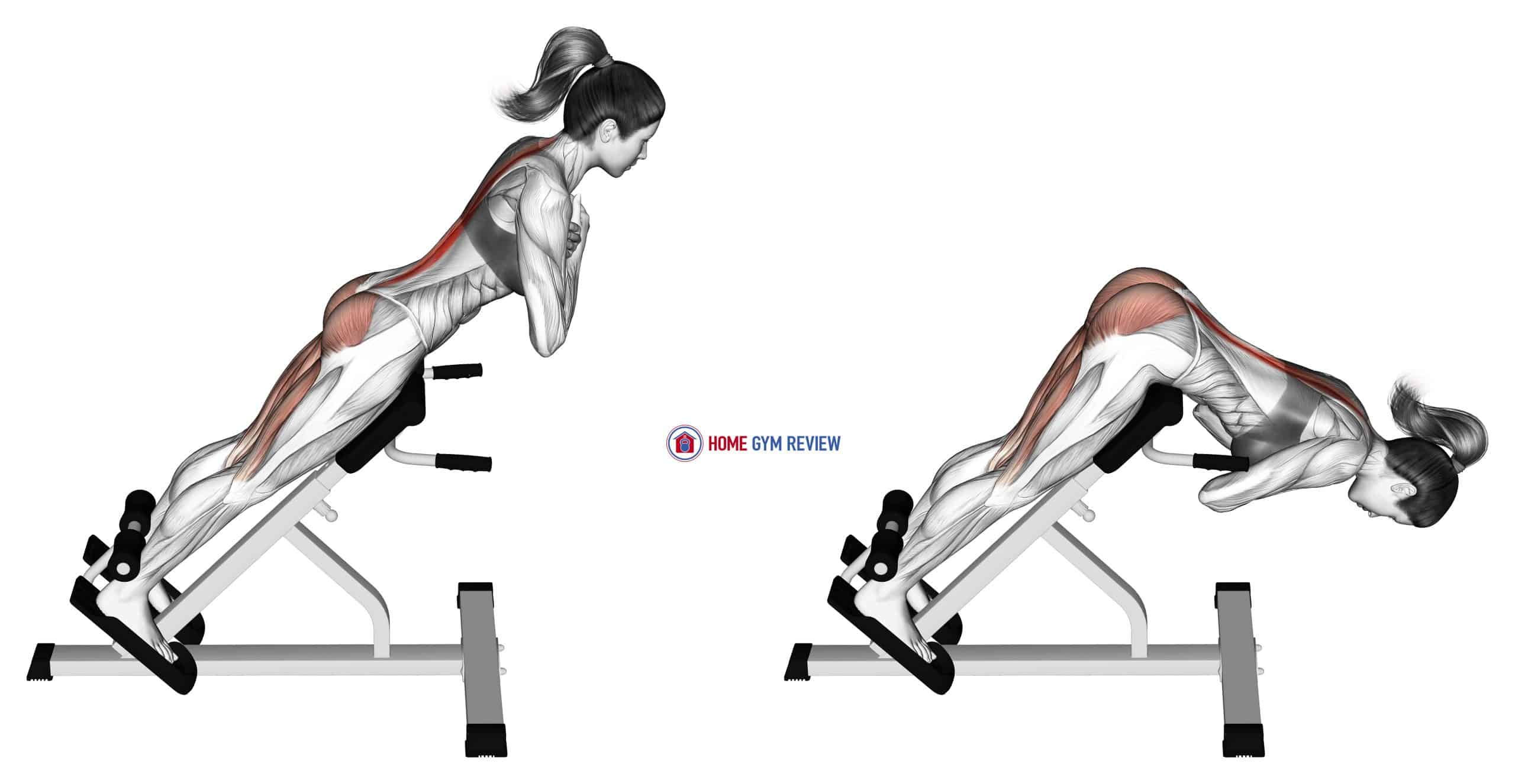 45 degree hyperextension (arms in front of chest)