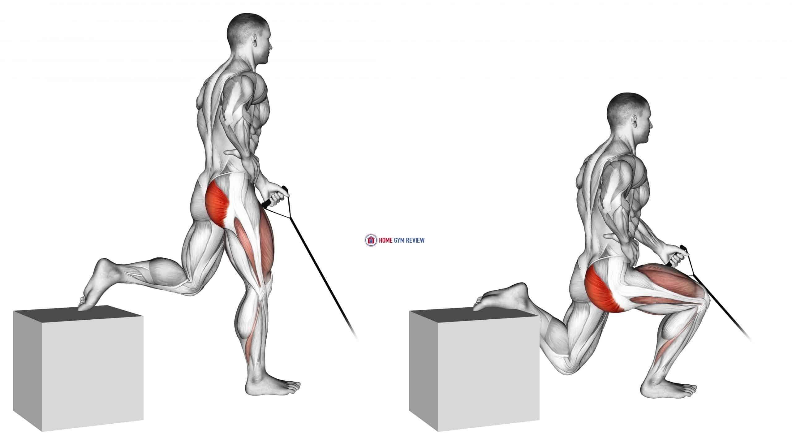 Band One Arm Single Leg Split Squat