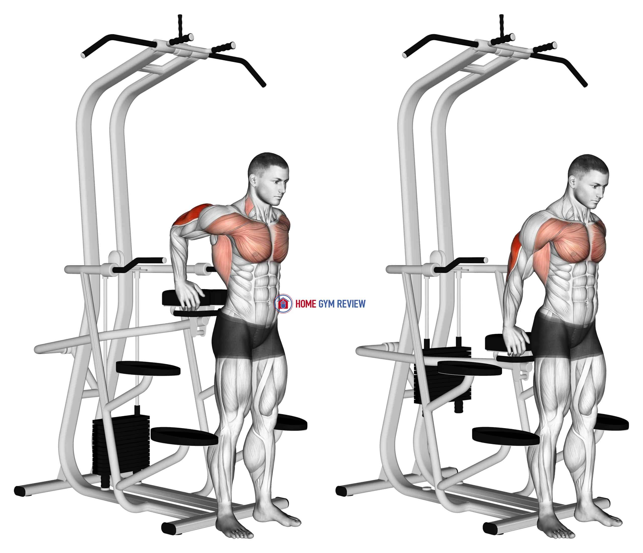 Assisted Standing Triceps Dip