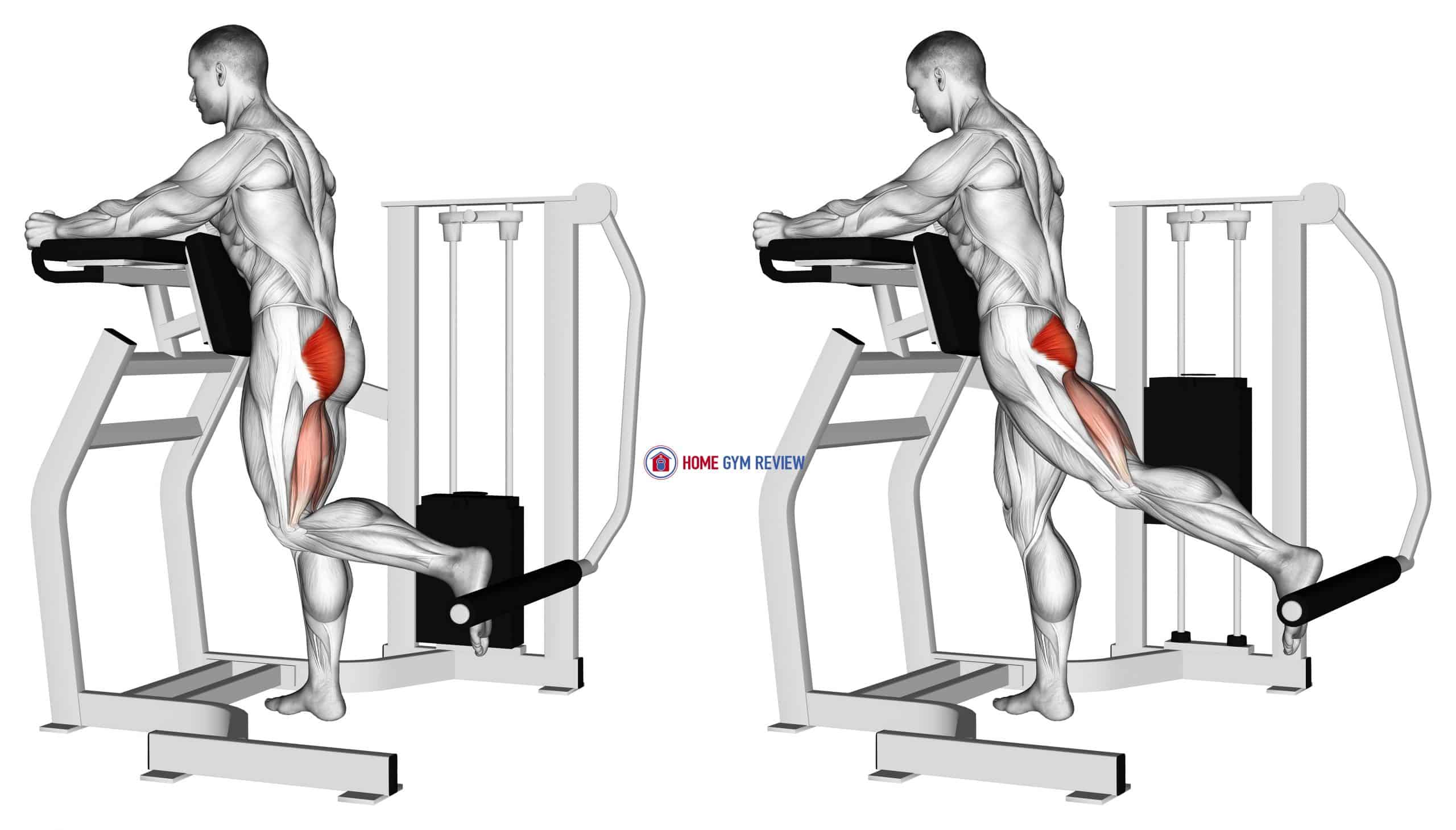 Lever Standing Hip Extension