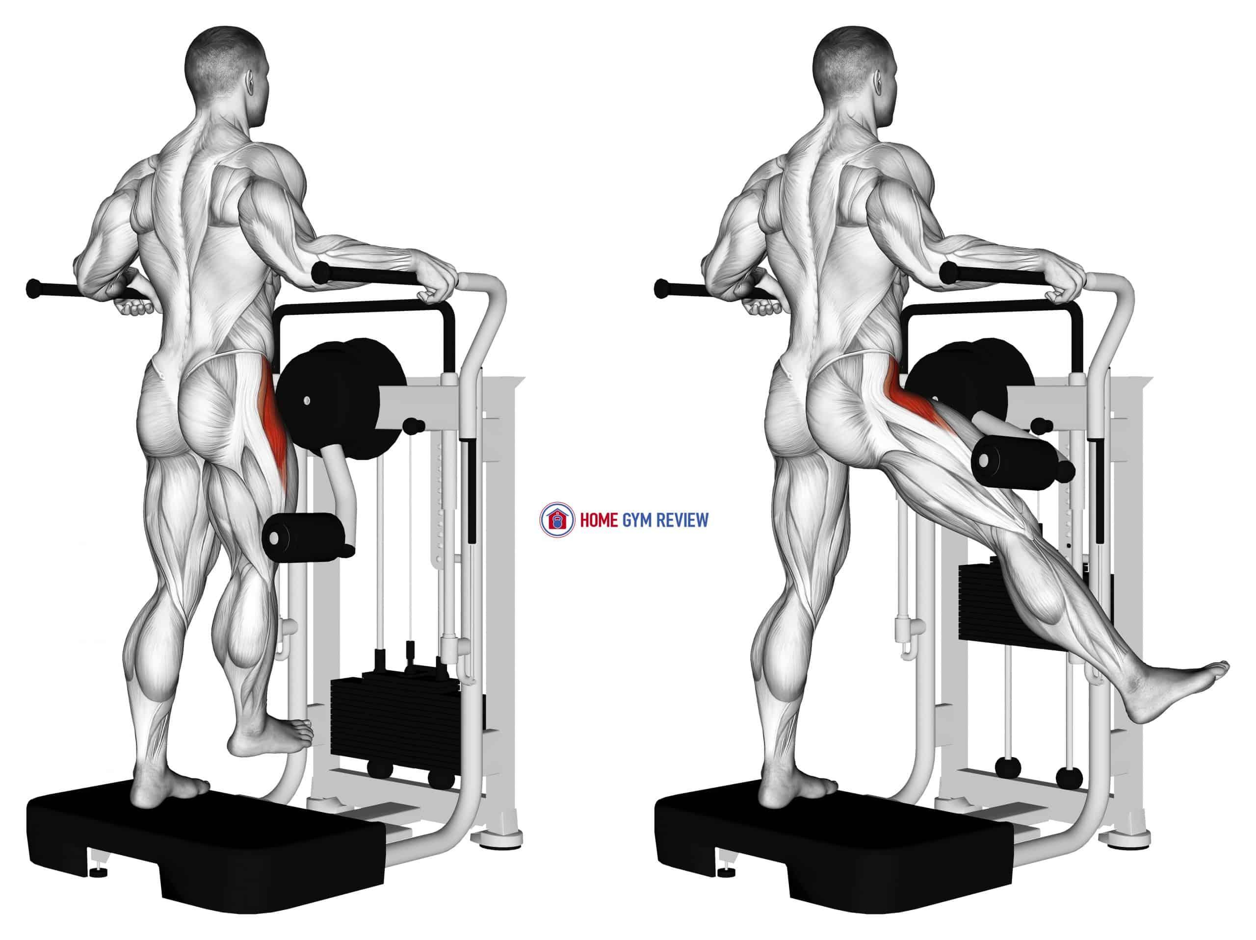 Lever Side Hip Abduction
