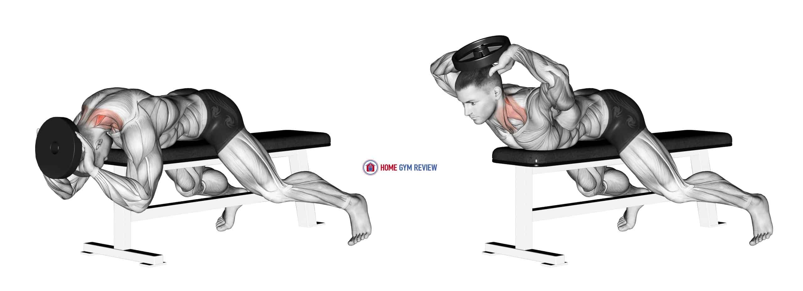 Weighted Lying Neck Extension