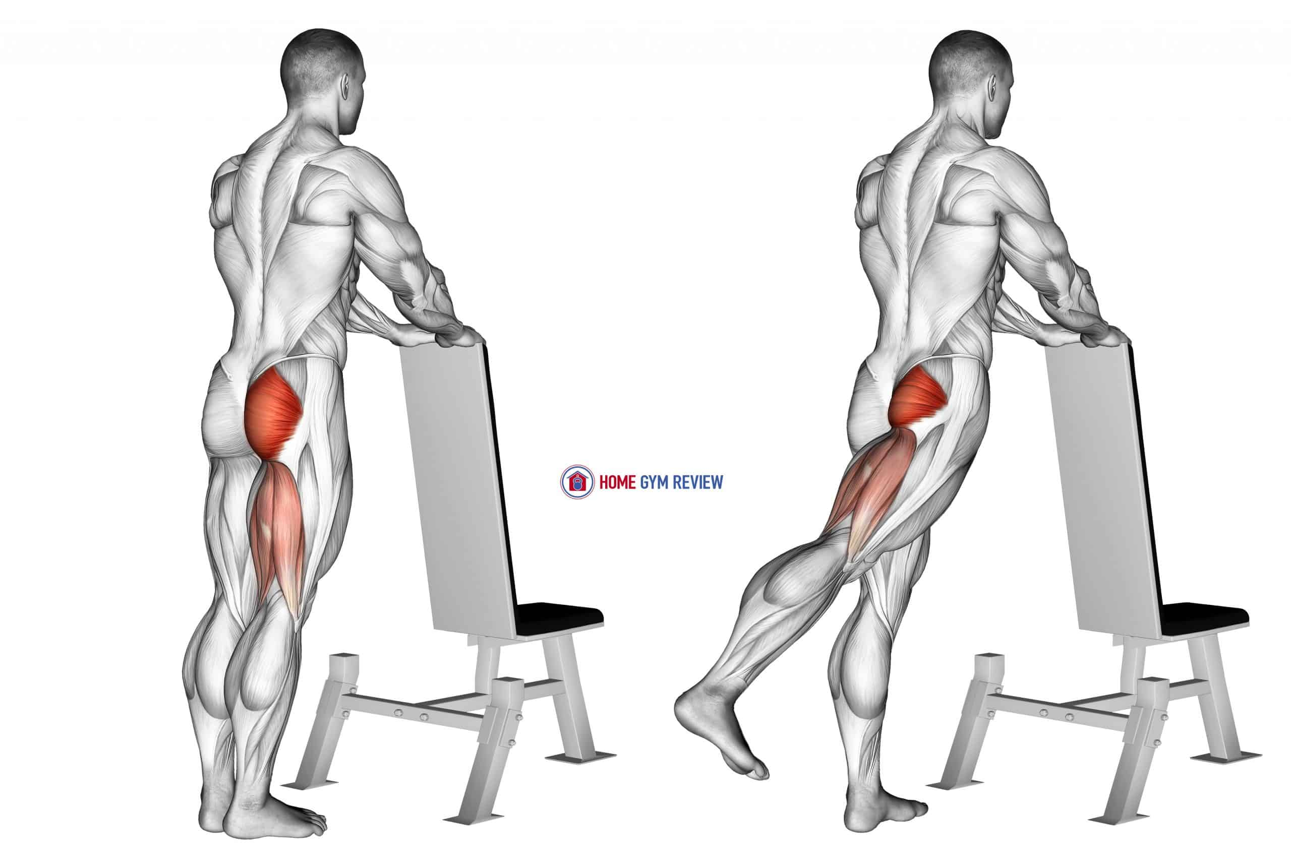 One leg kickback (with bench support)