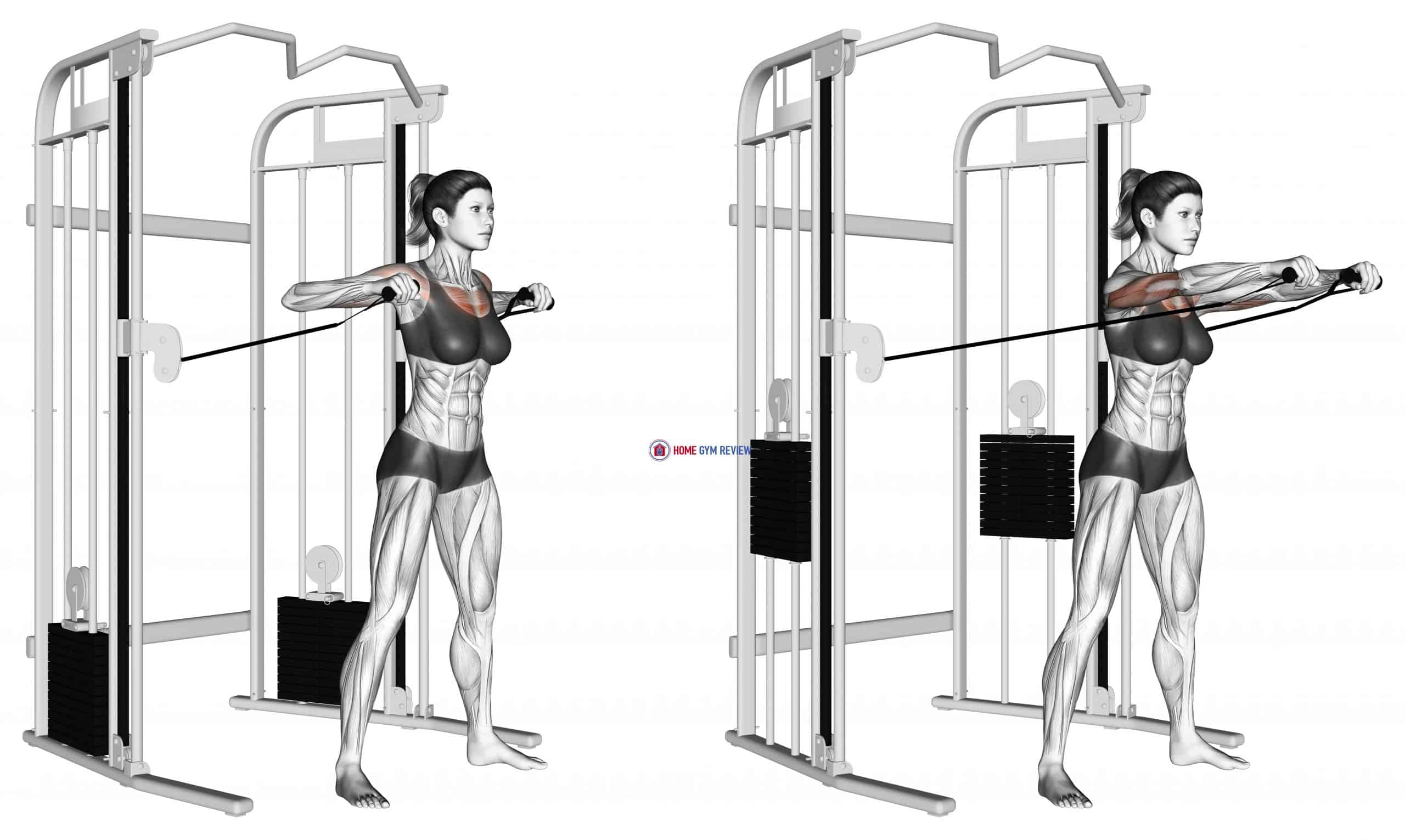 Cable Standing Chest Press