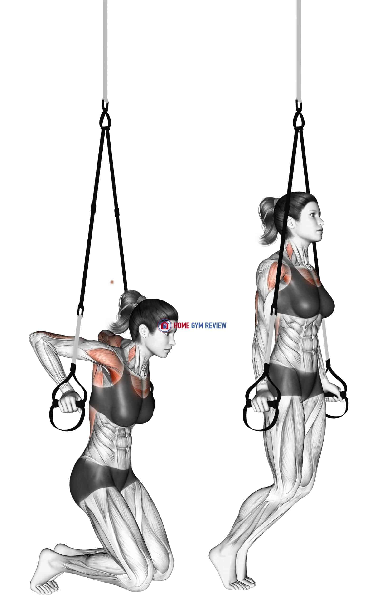 Suspension Self assisted Chest Dip