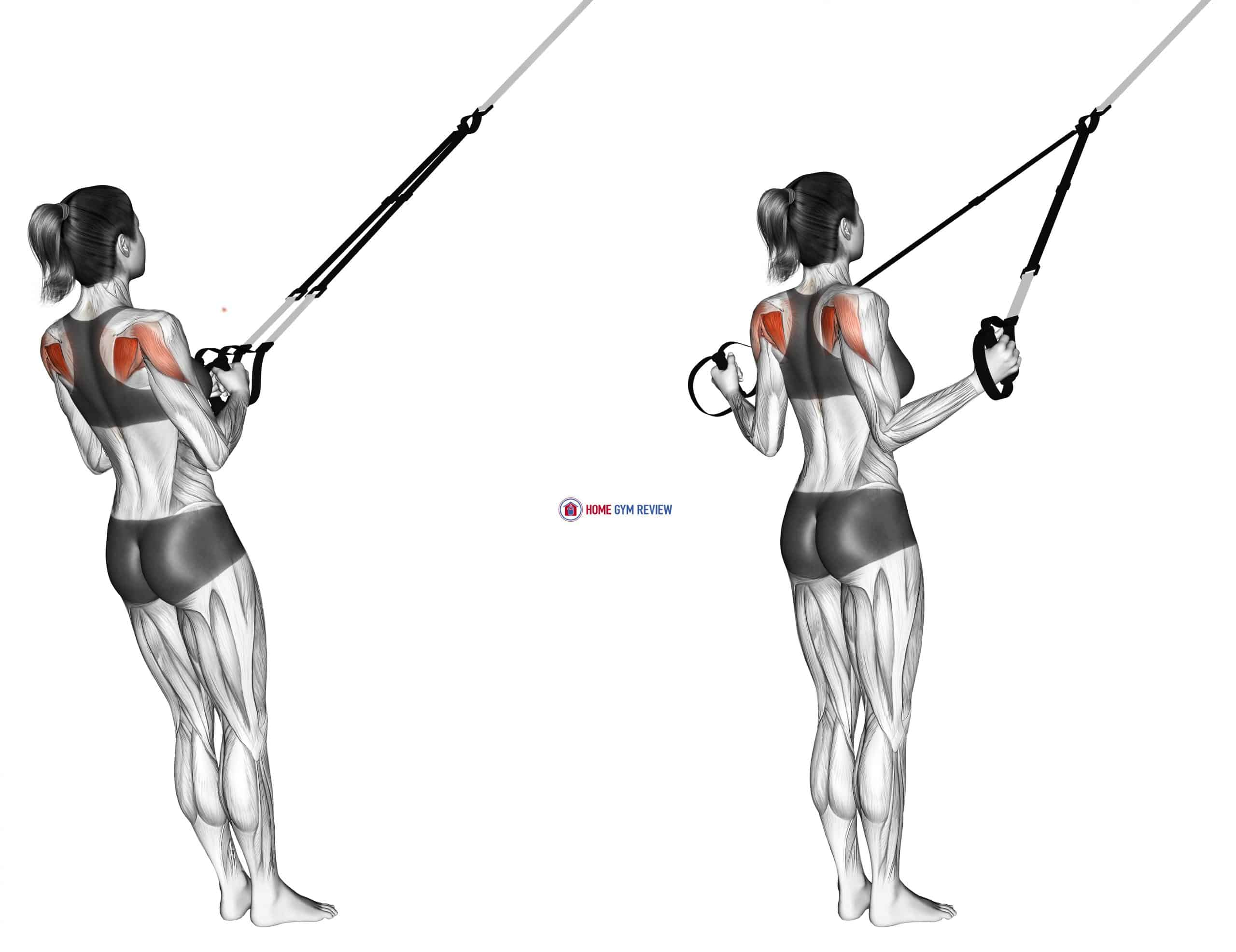Suspension Shoulder External Rotation