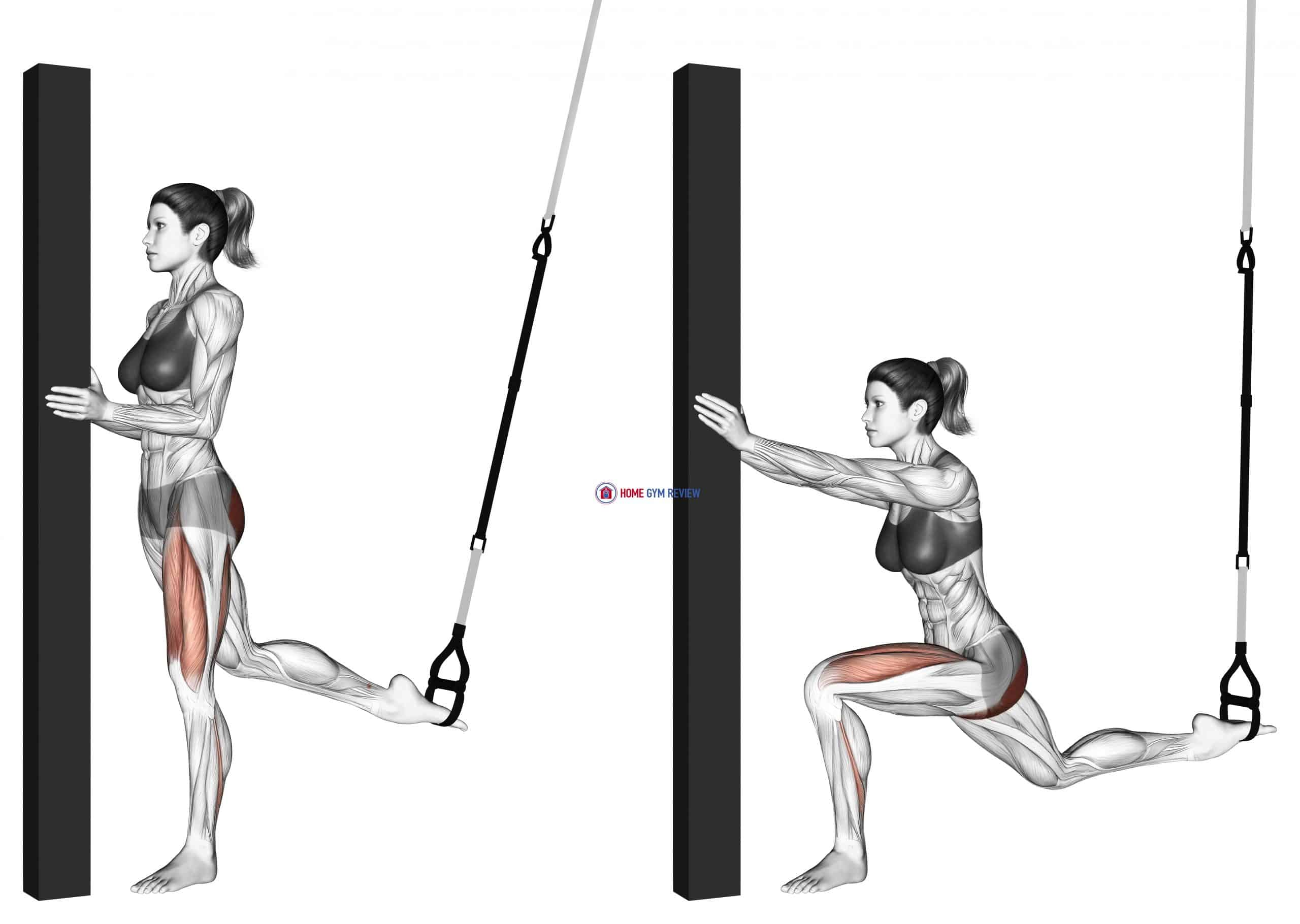 Suspension Single Leg Split Squat (self assisted)