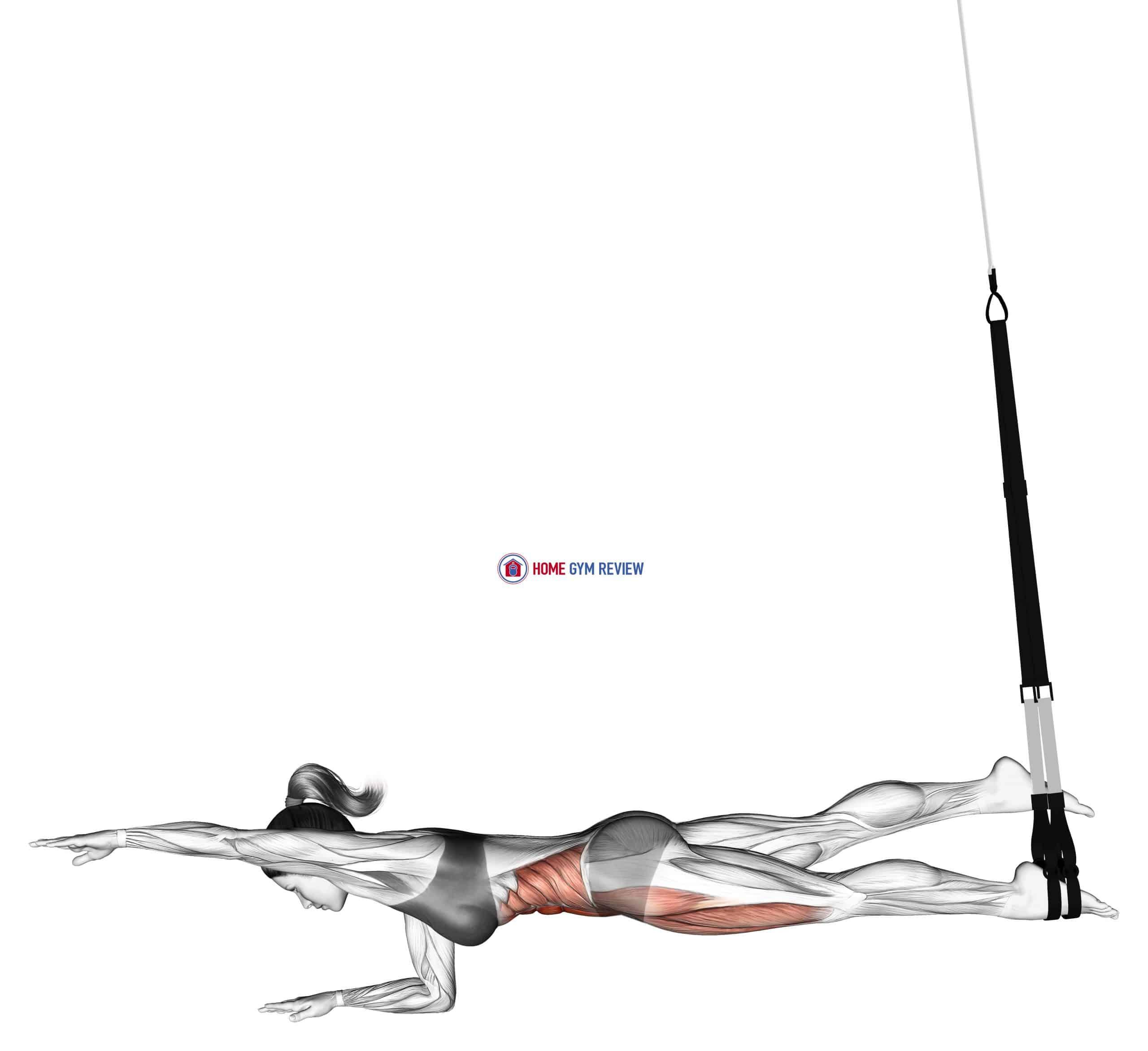 Suspension Single Leg Plank (straight arm)