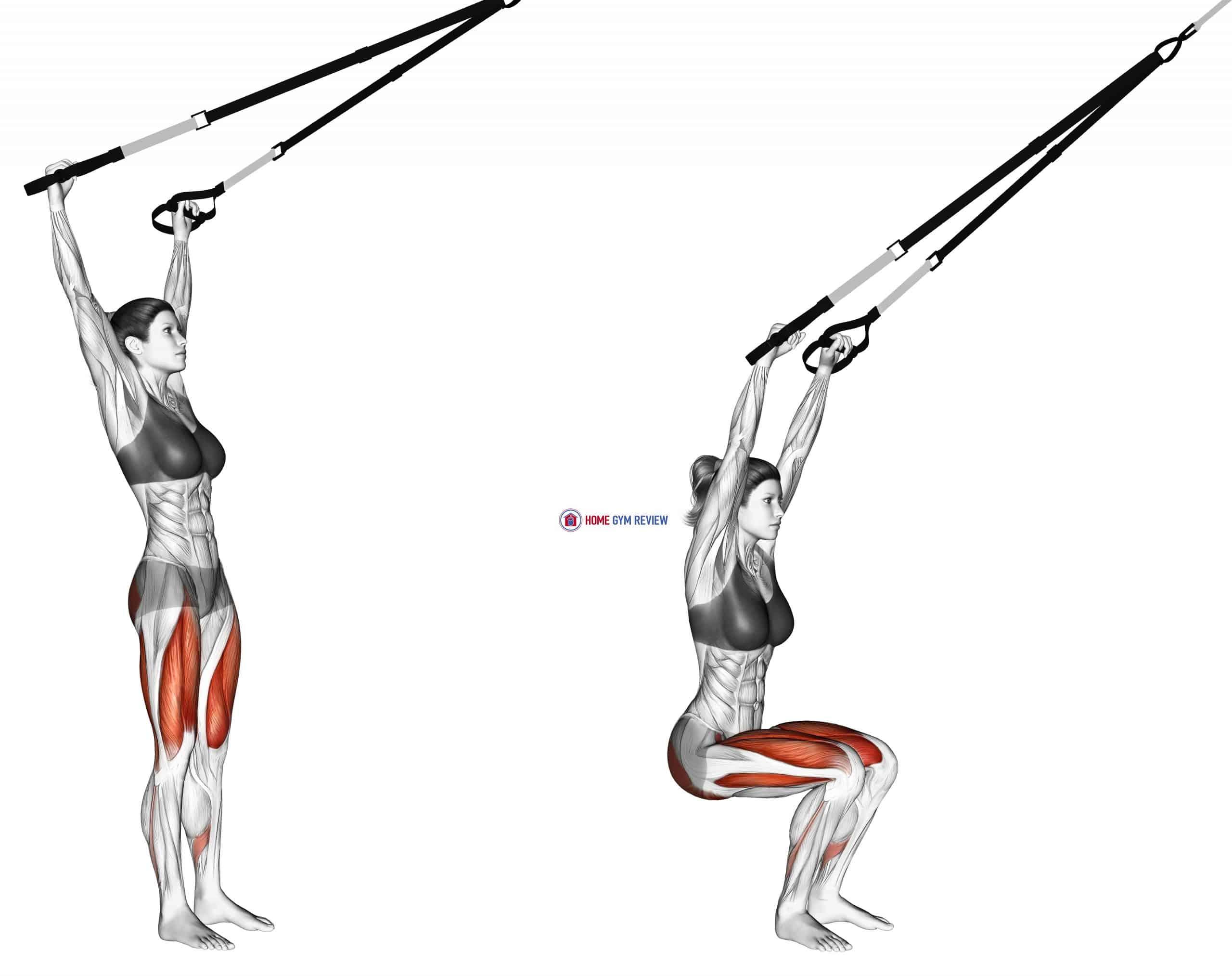 Suspension Squat (Arms Overhead)