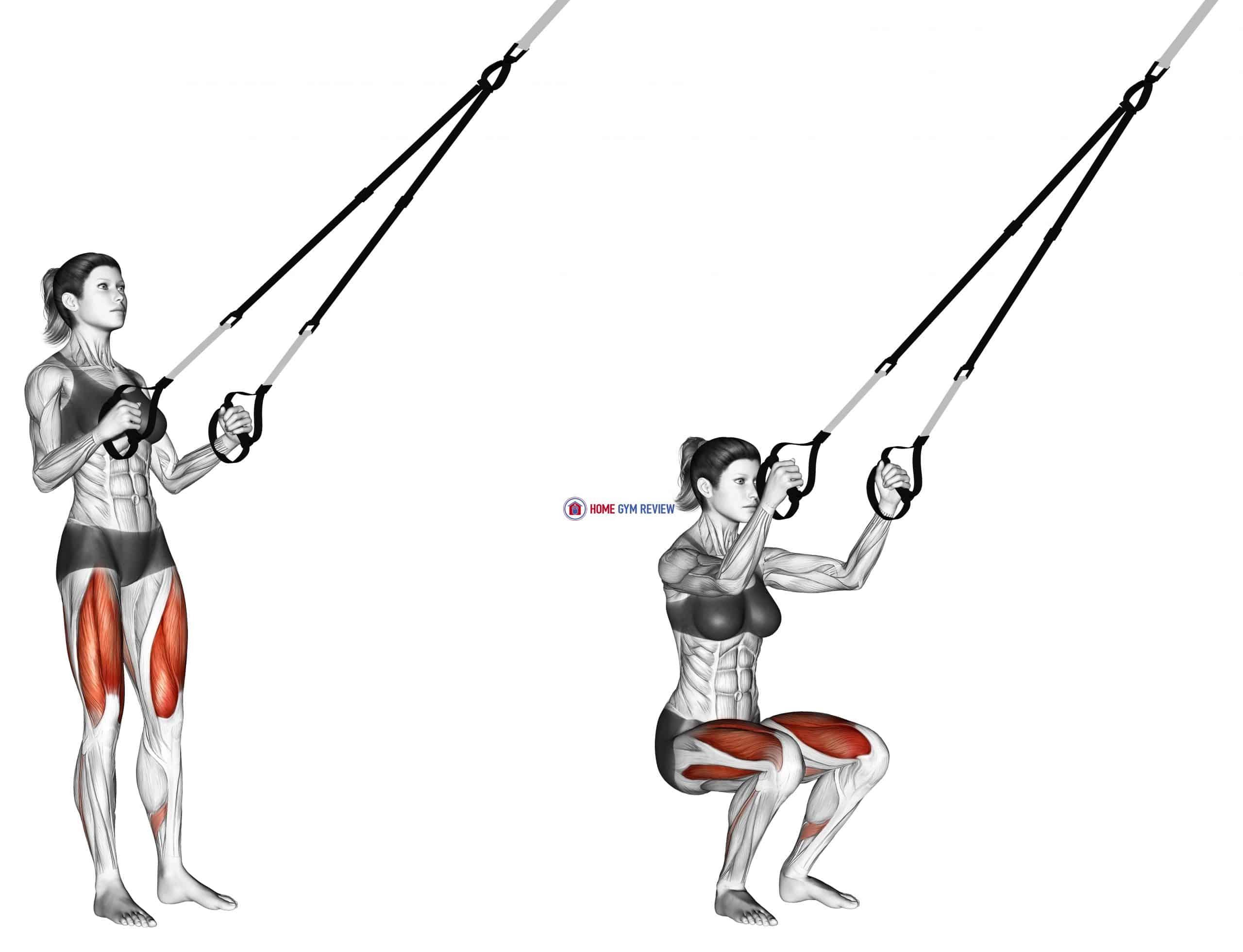 Suspension Squat
