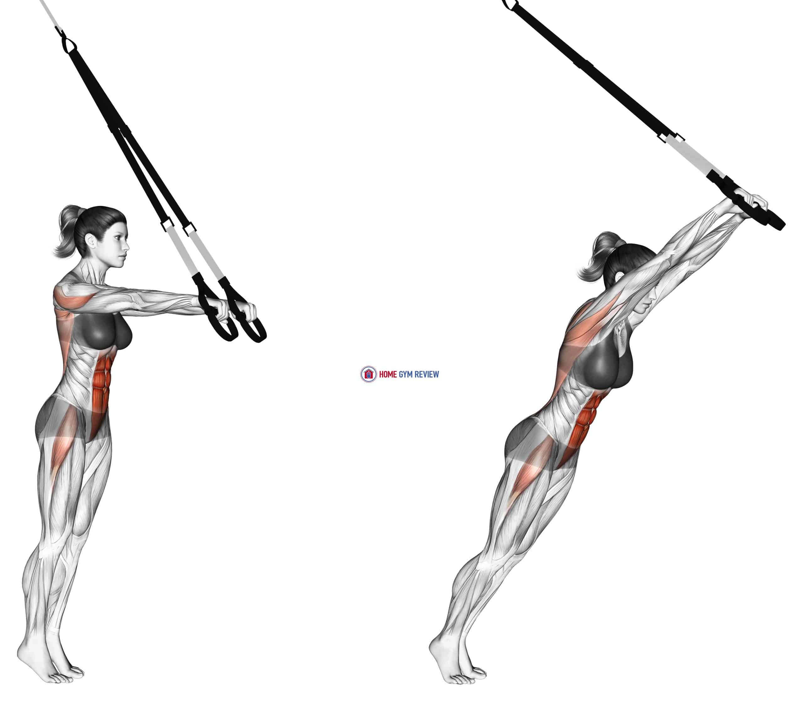 Suspension Standing Ab Rollout