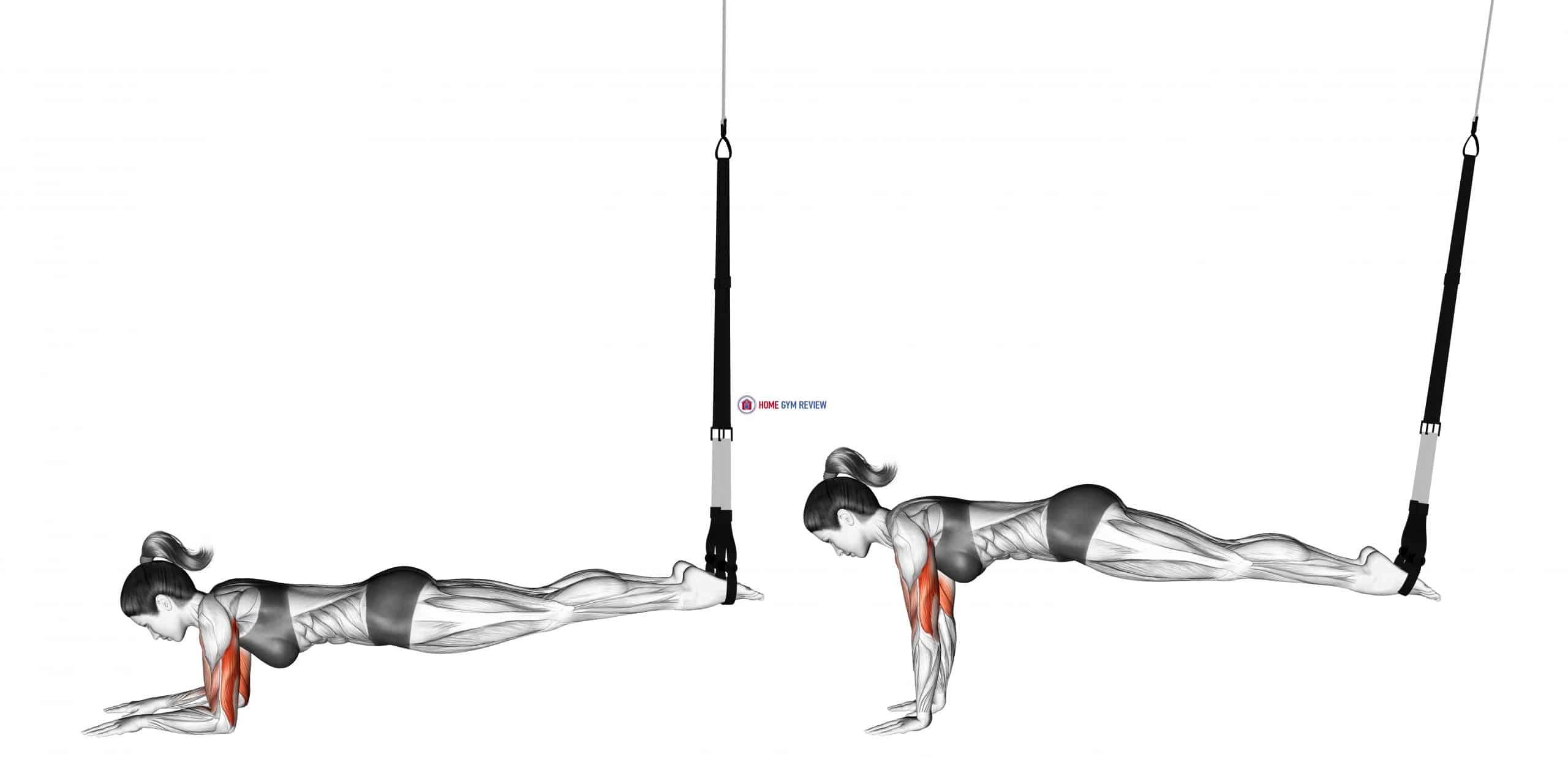 Suspension Triceps Extension Push-up