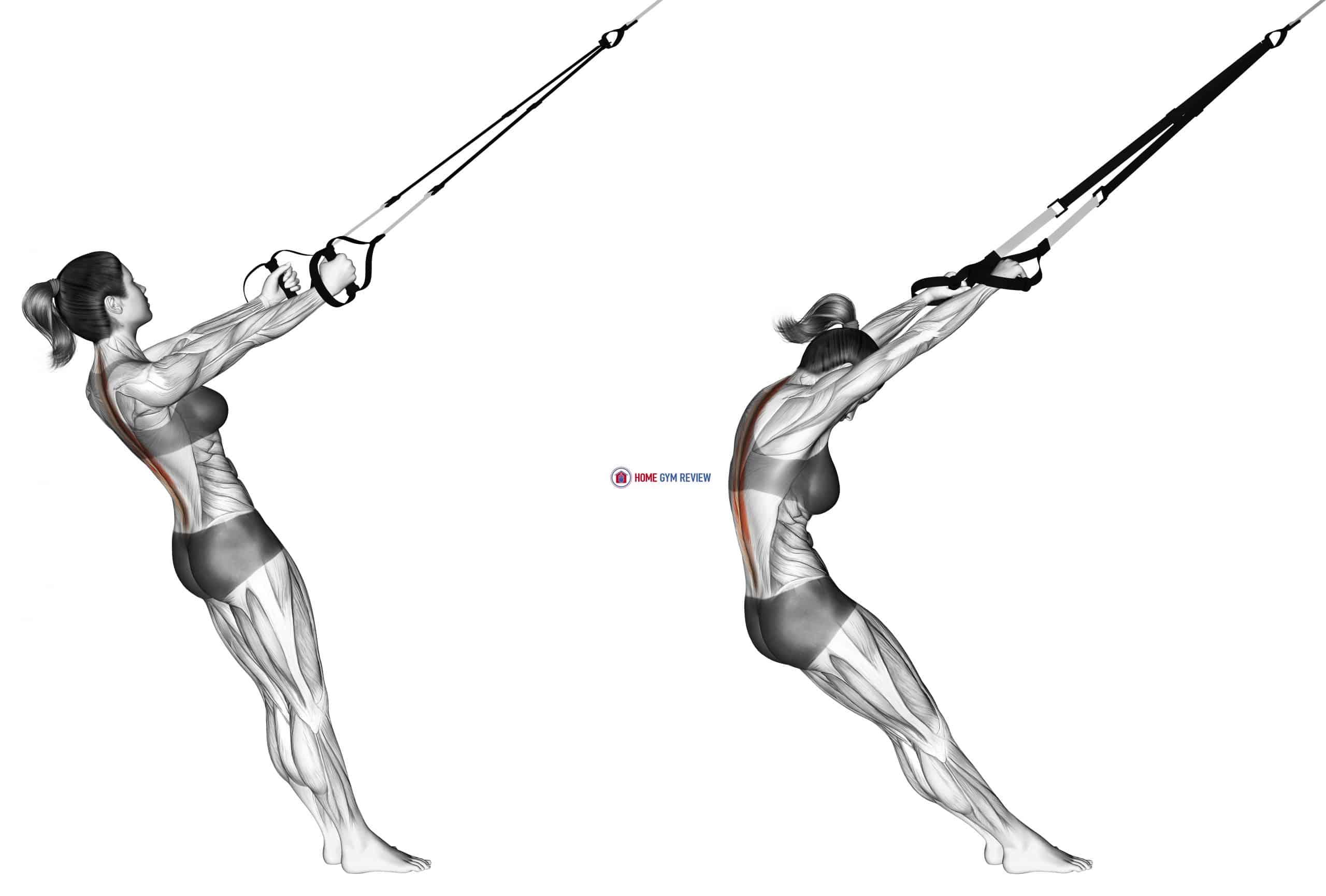 Suspension Upper Back Stretch