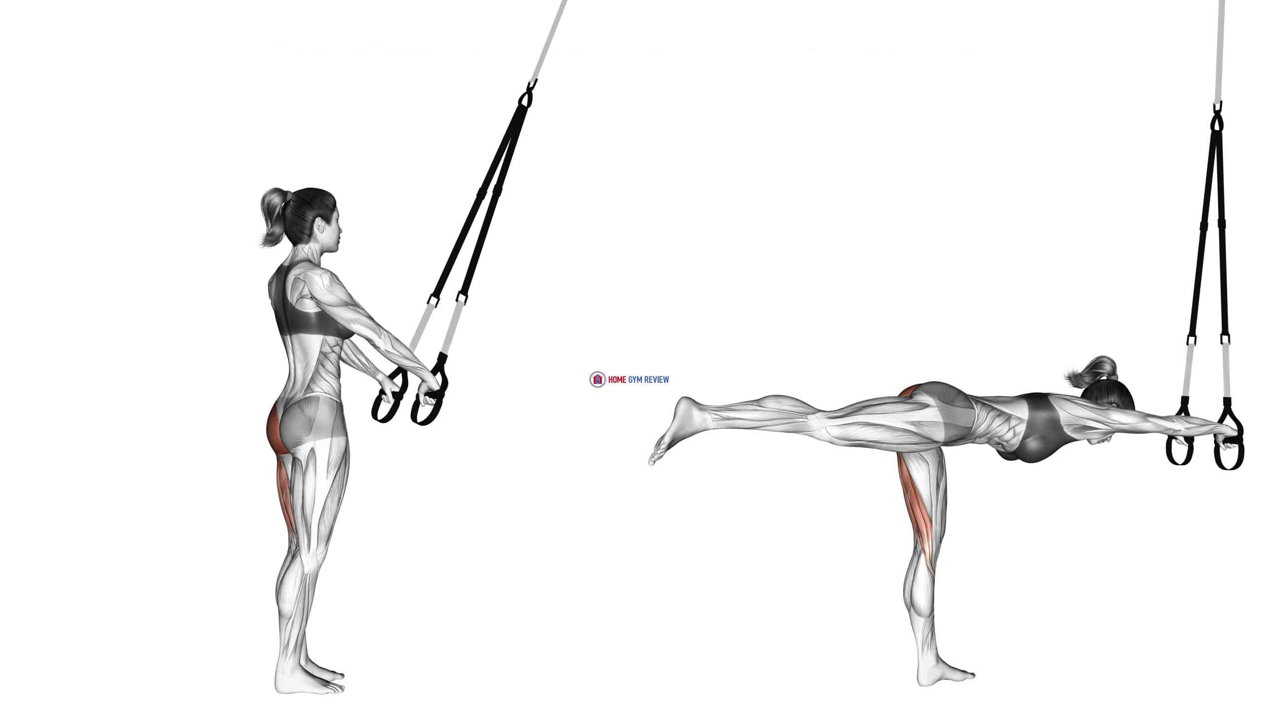 Suspension Single Leg Deadlift
