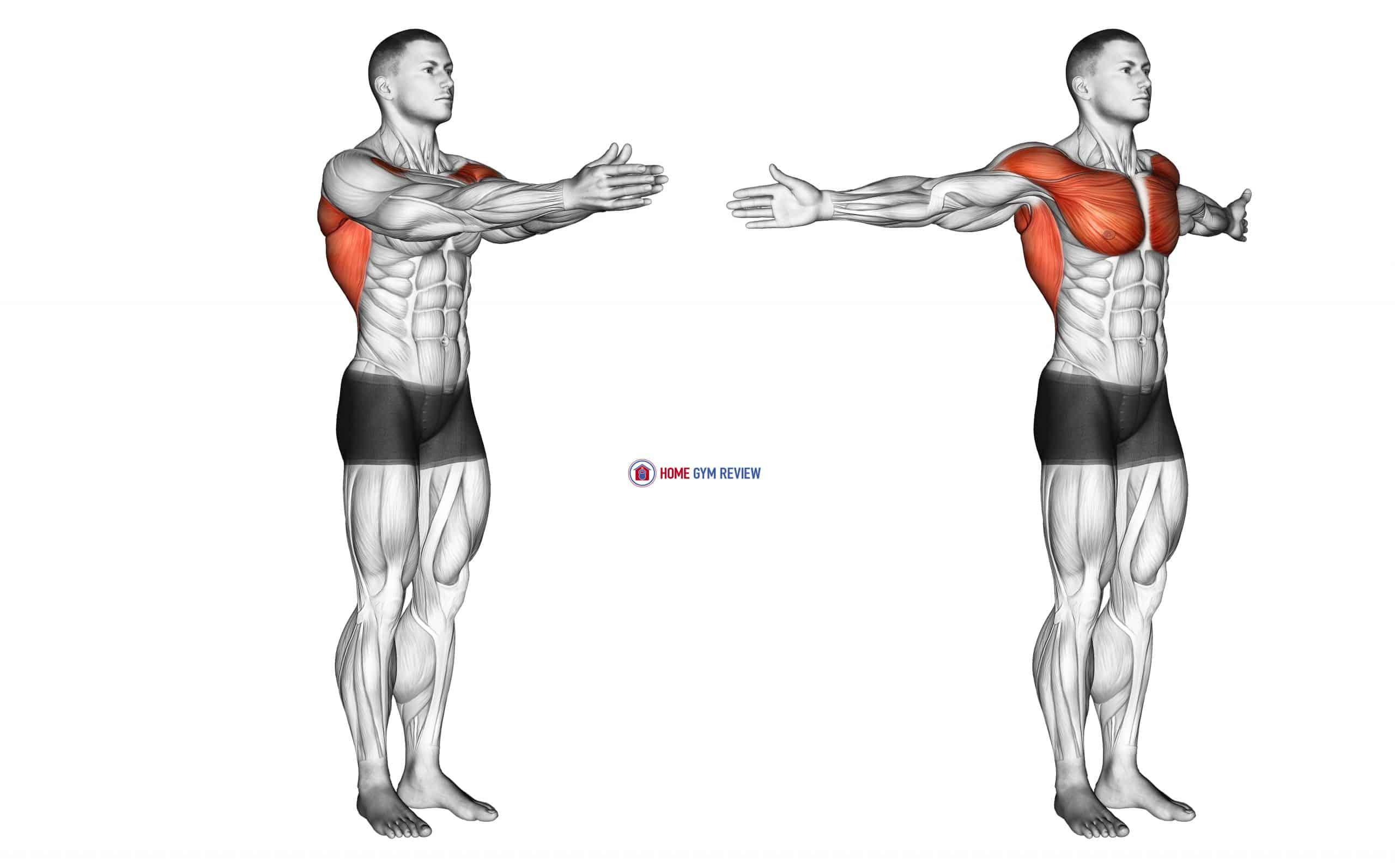 Dynamic Chest Stretch (male)