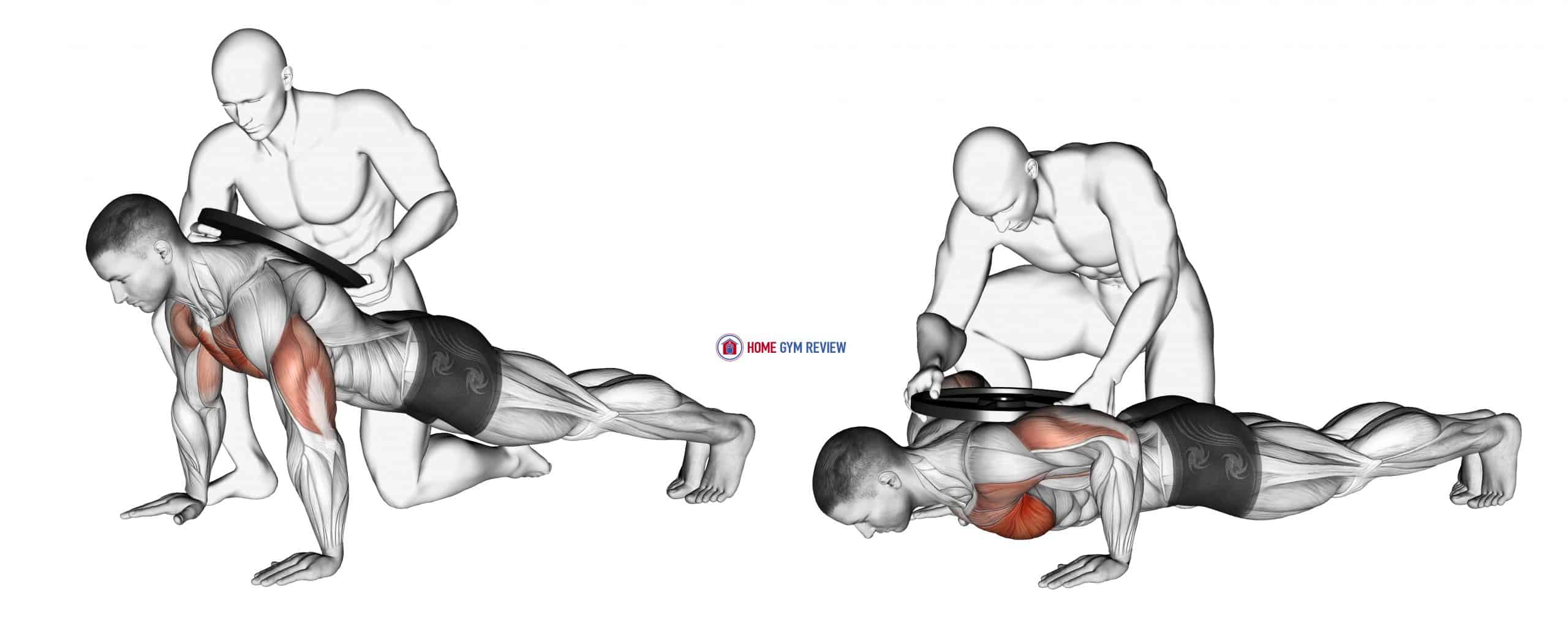 Assisted Weighted Push-up