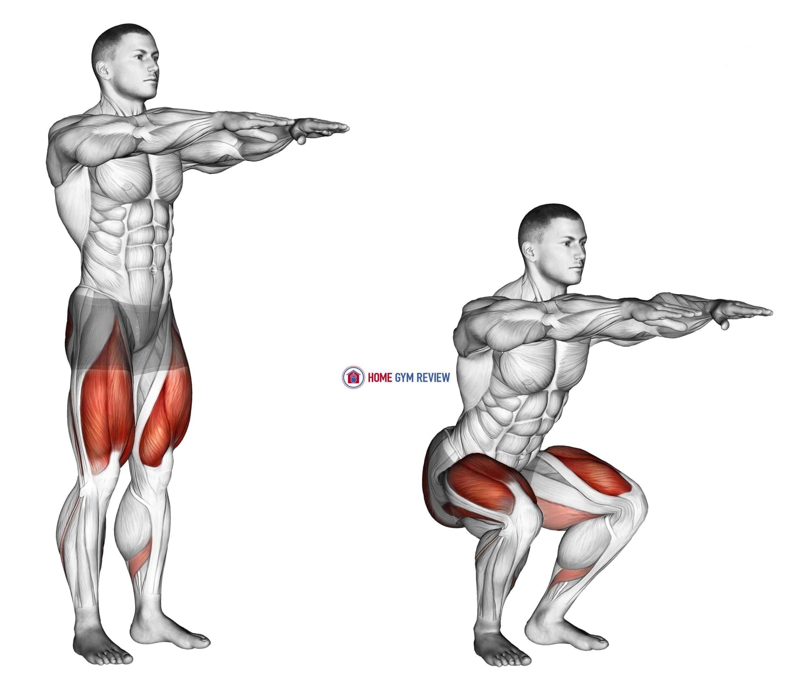 Squat (male)