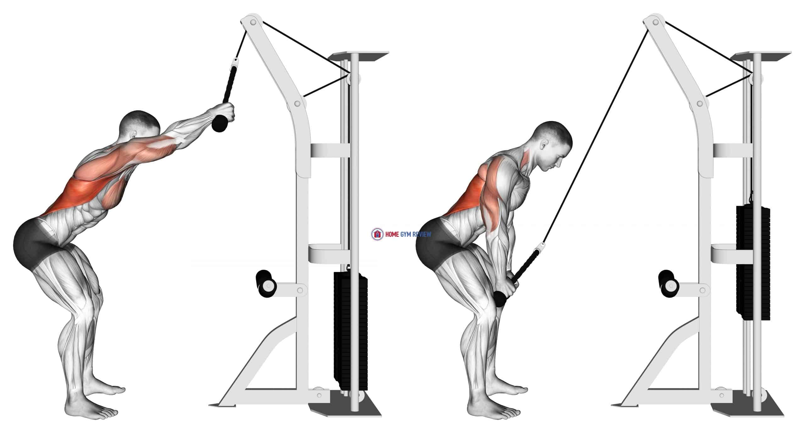 Cable Standing Lat Pushdown (rope equipment)
