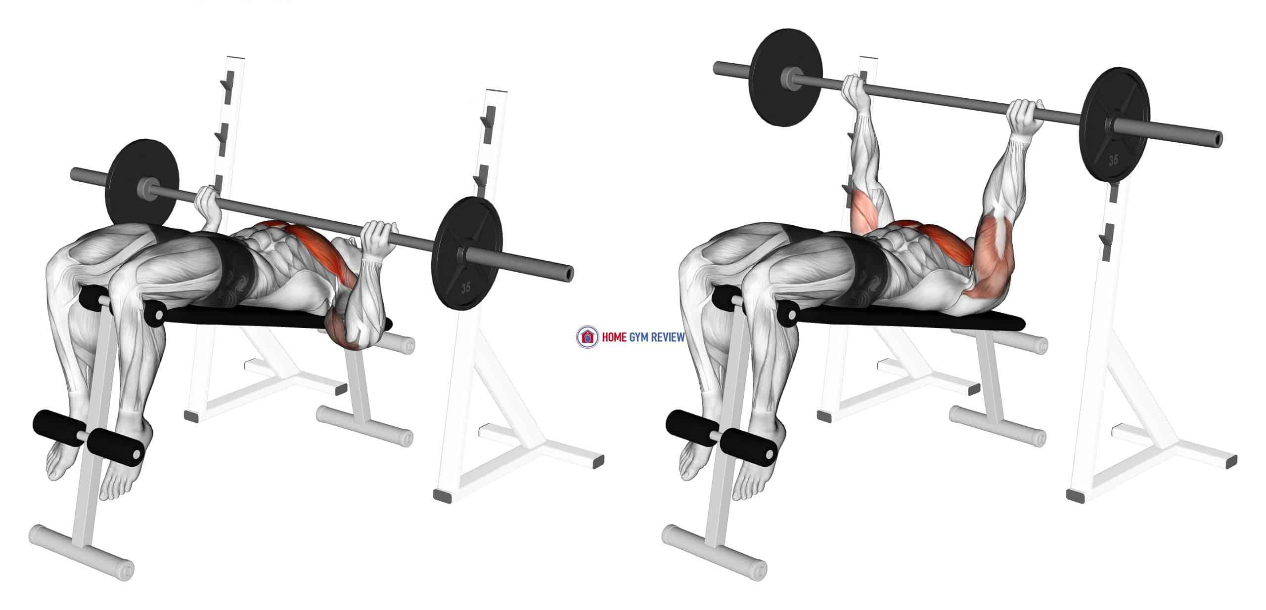 Barbell Reverse Grip Decline Bench Press