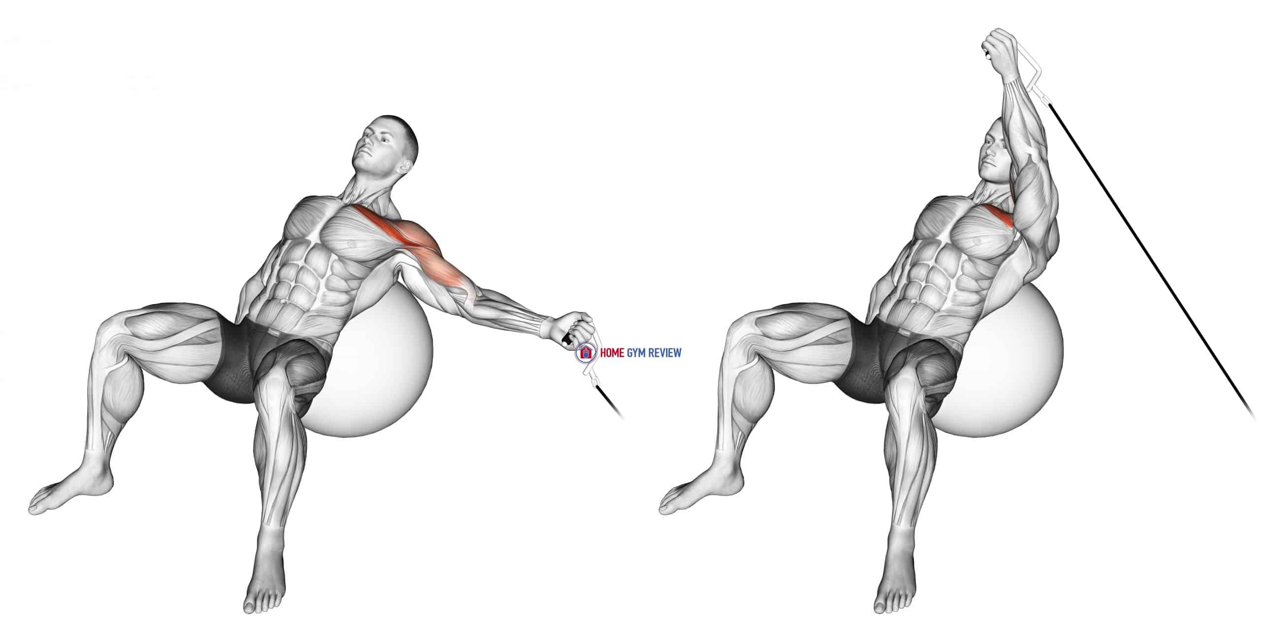 Cable One Arm Incline Fly on Exercise Ball