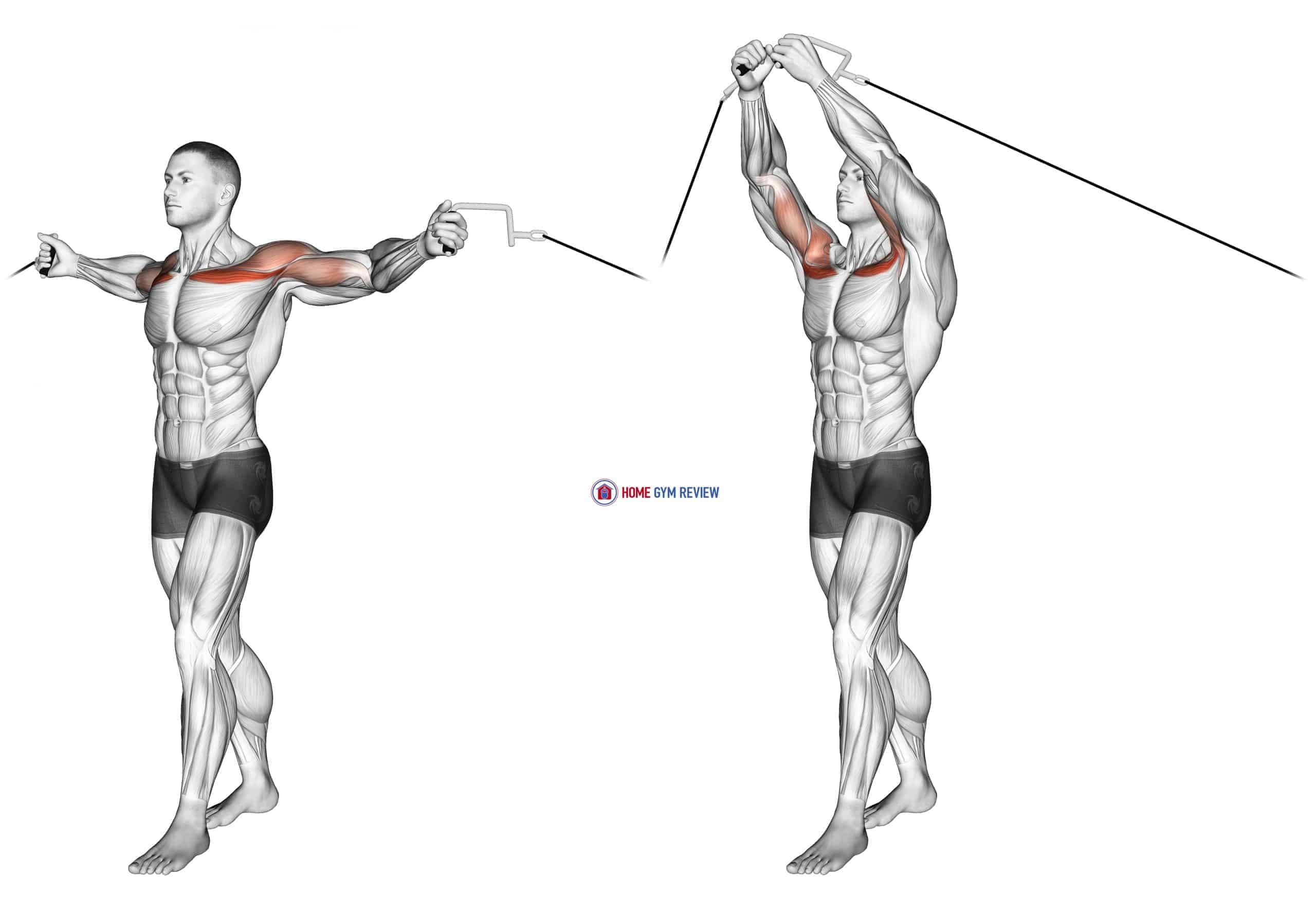 Cable Upper Chest Crossovers
