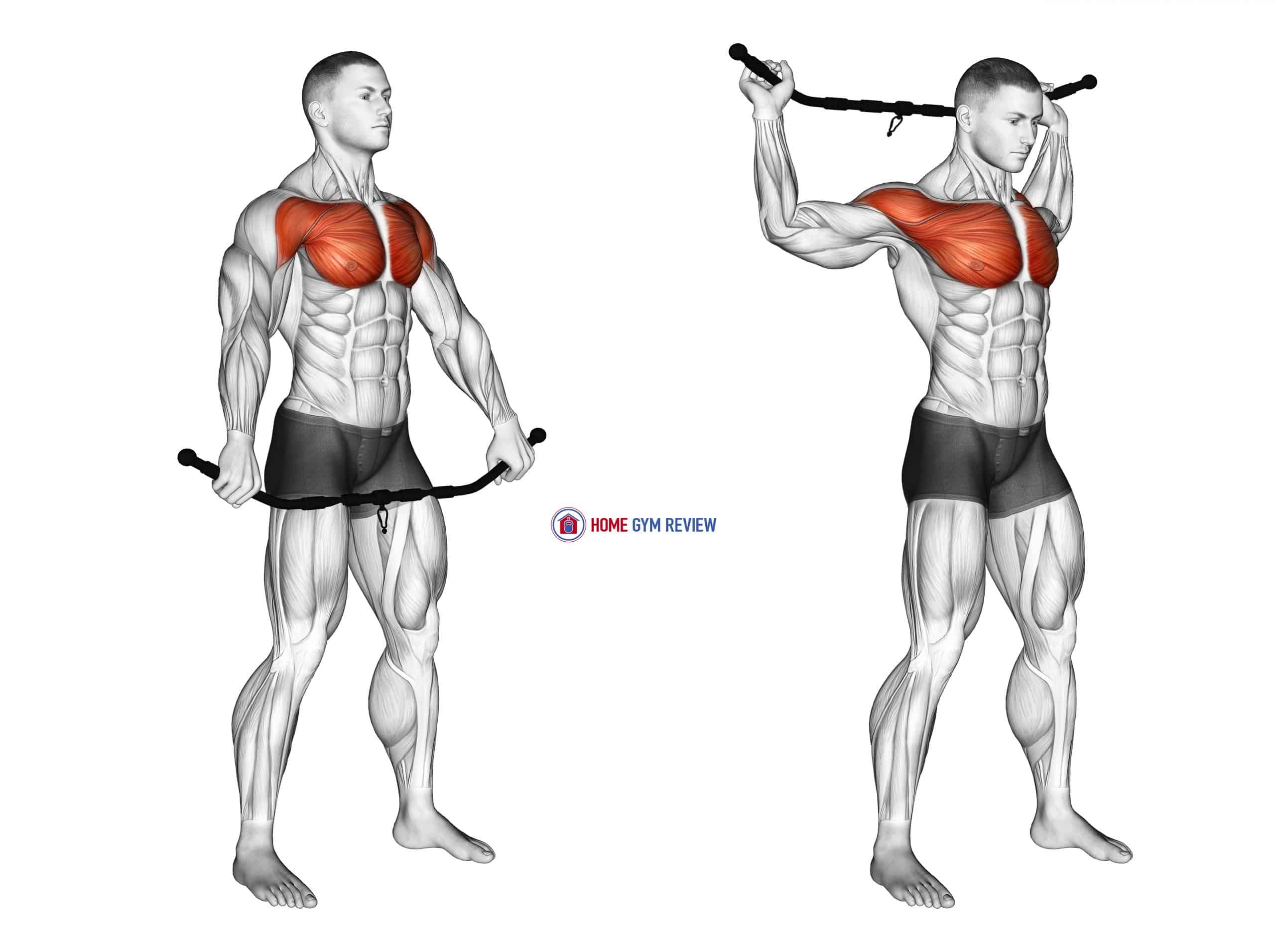 Chest and Front of Shoulder Stretch