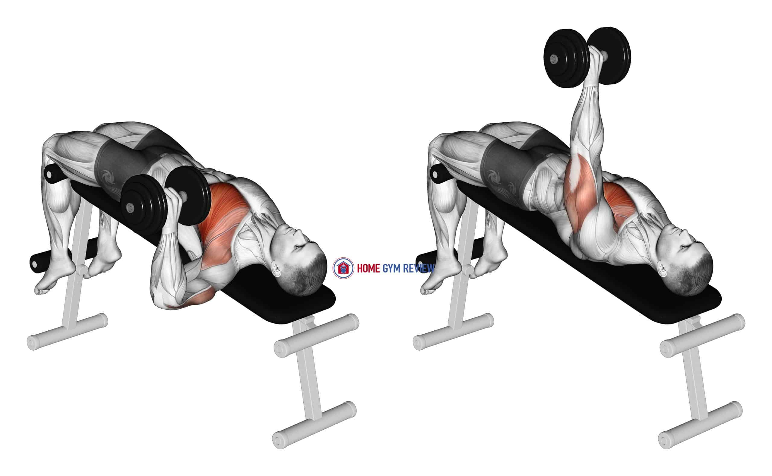 Dumbbell One Arm Decline Chest Press
