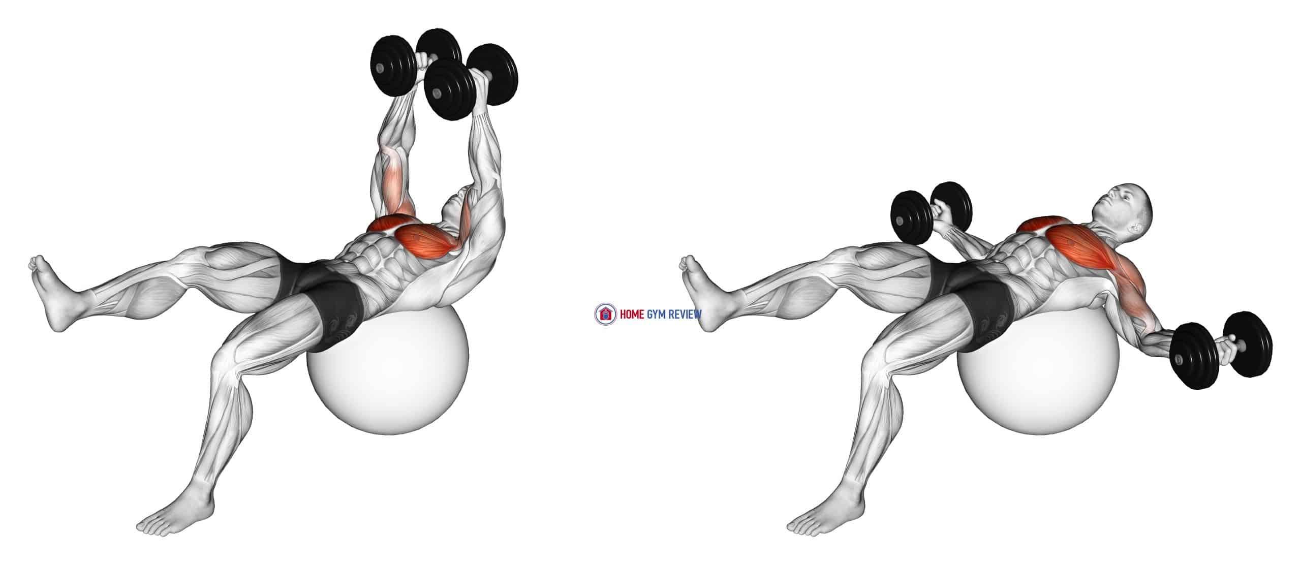 Dumbbell One Leg Fly on Exercise Ball