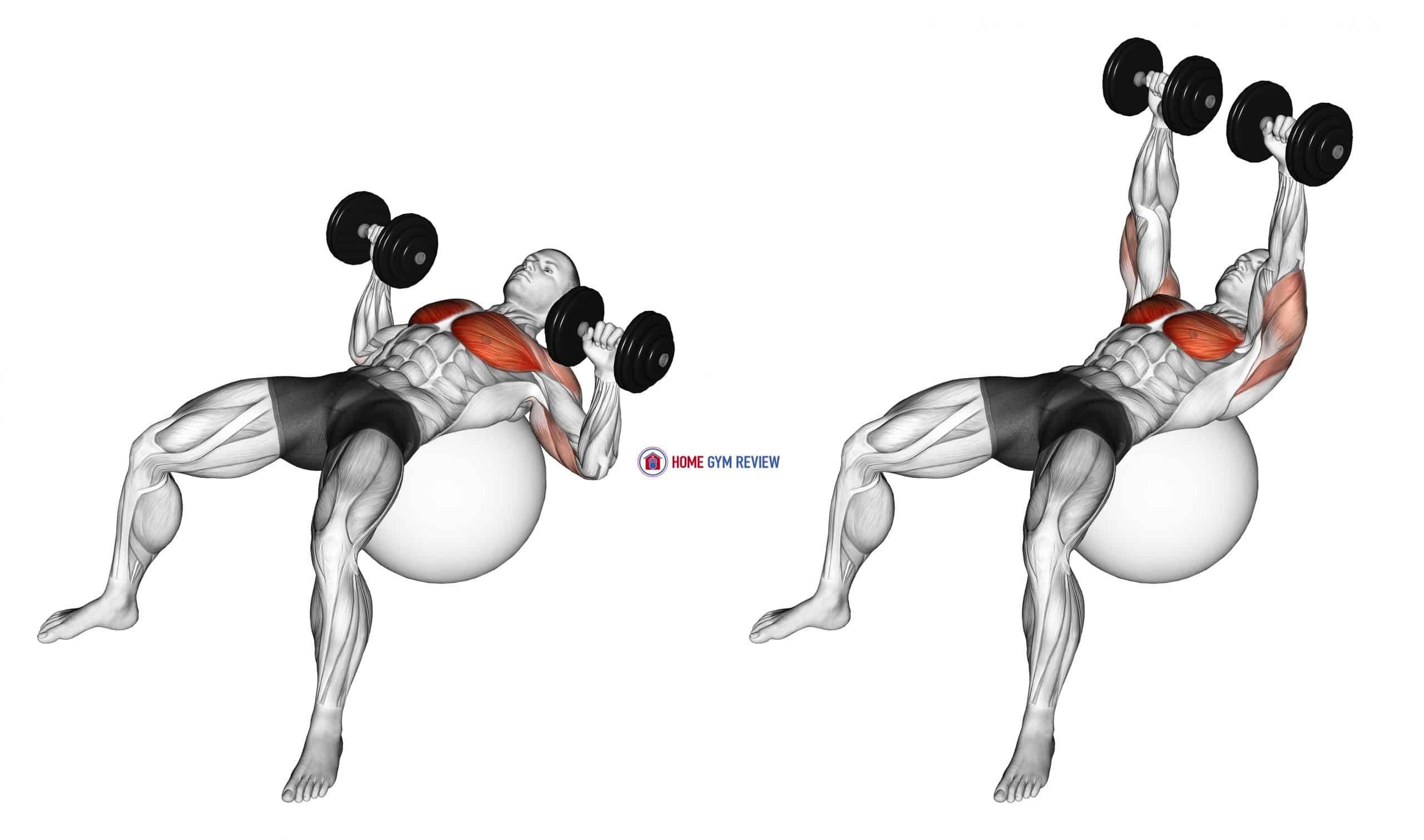 Dumbbell Press on Exercise Ball