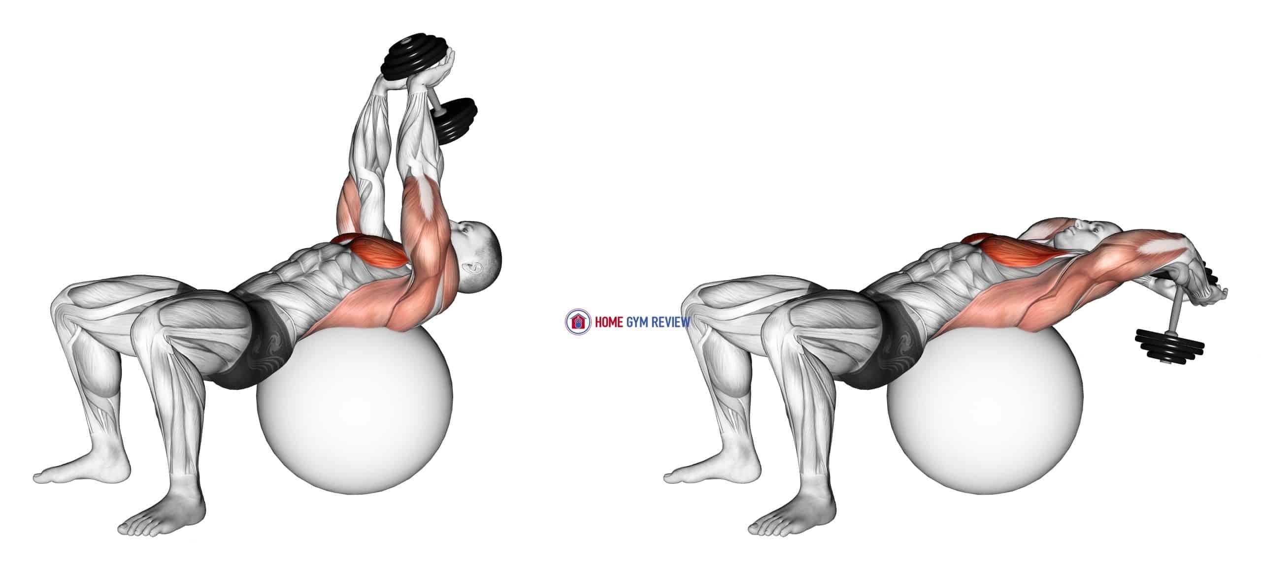 Dumbbell Pullover on Exercise Ball