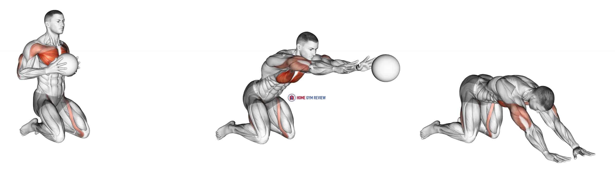 Medicine Ball Chest Push Multiple Response