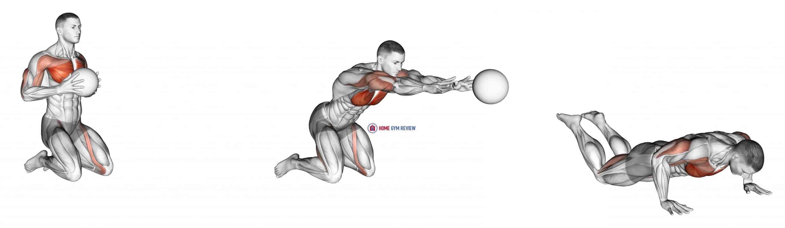 Medicine Ball Chest Push Single Response