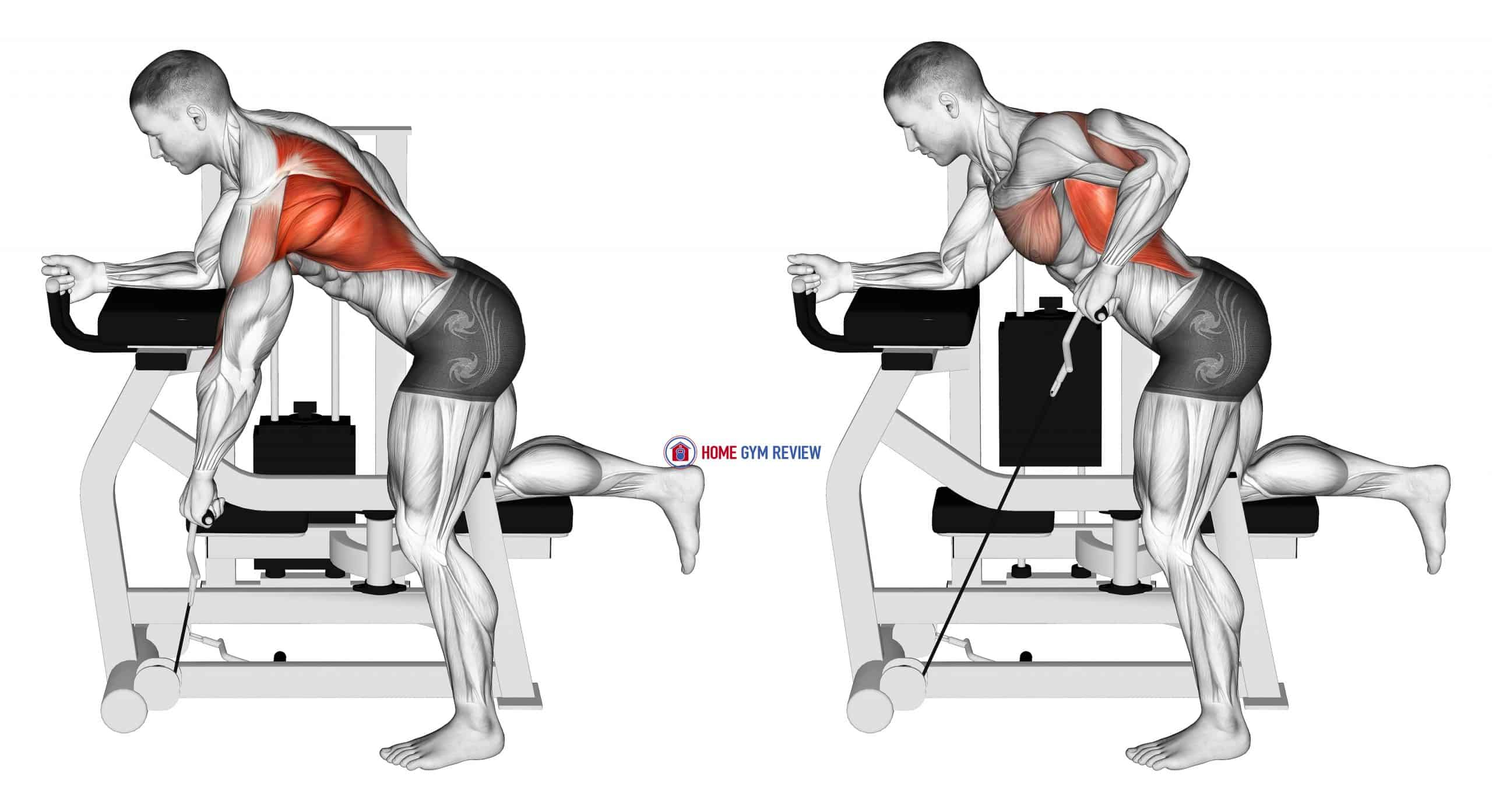 Lever Unilateral Row