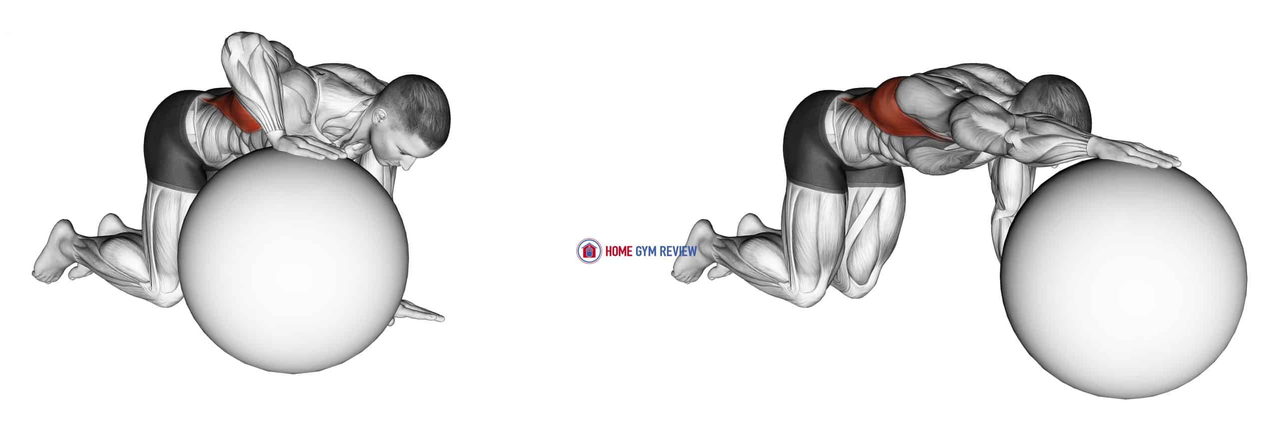 Exercise Ball Lat Stretch