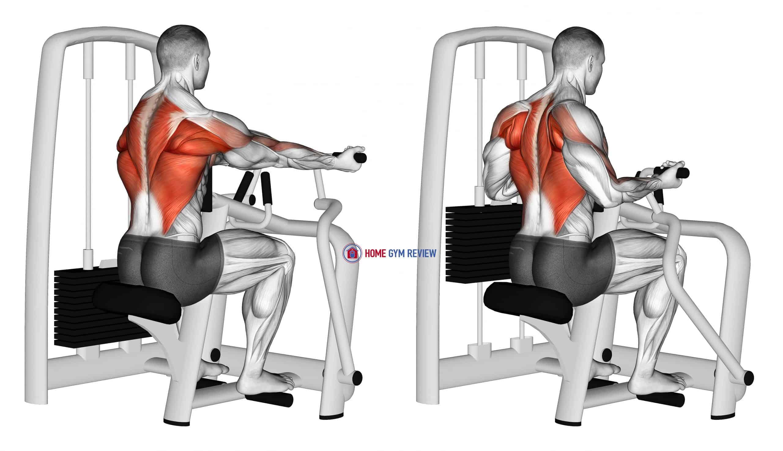 Lever Reverse Grip Vertical Row