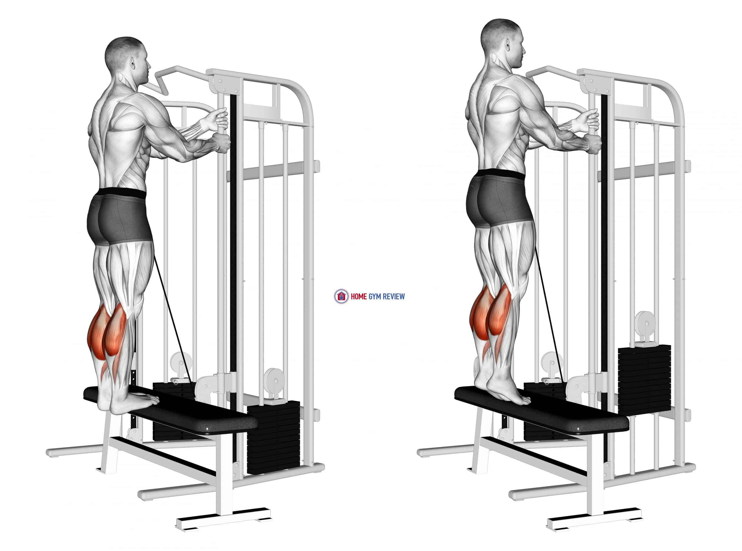 Cable Standing Calf Raise