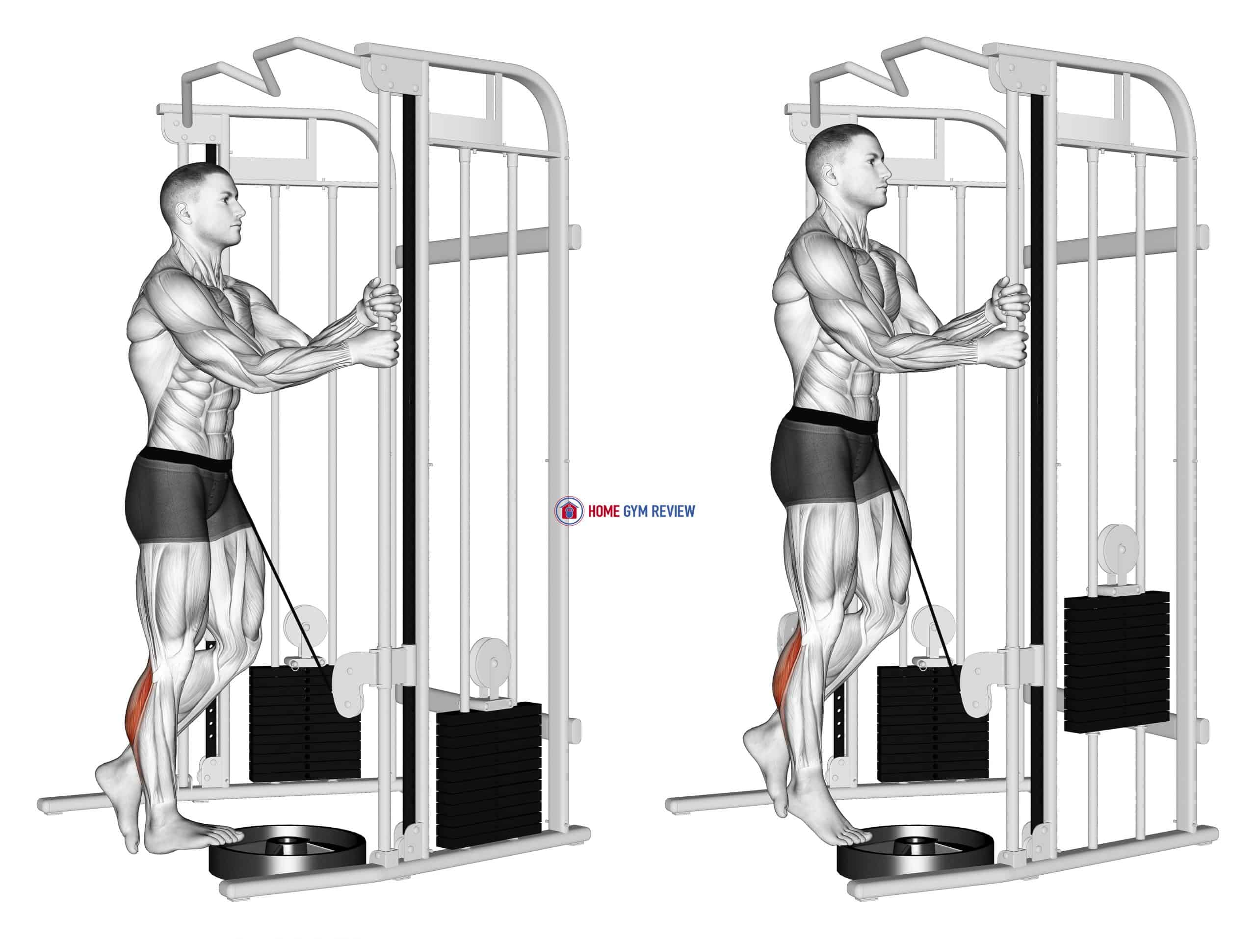 Cable Standing One Leg Calf Raise