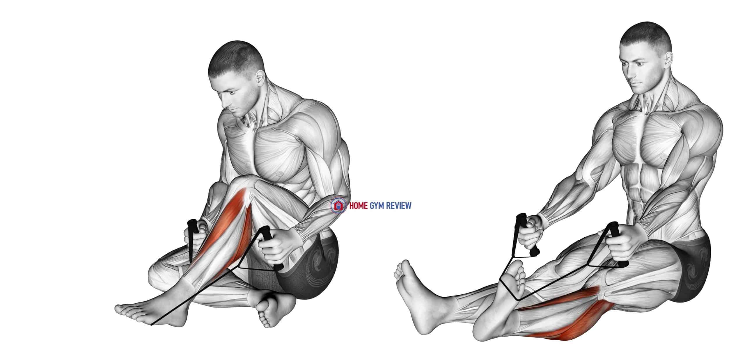Posterior Tibialis Stretch