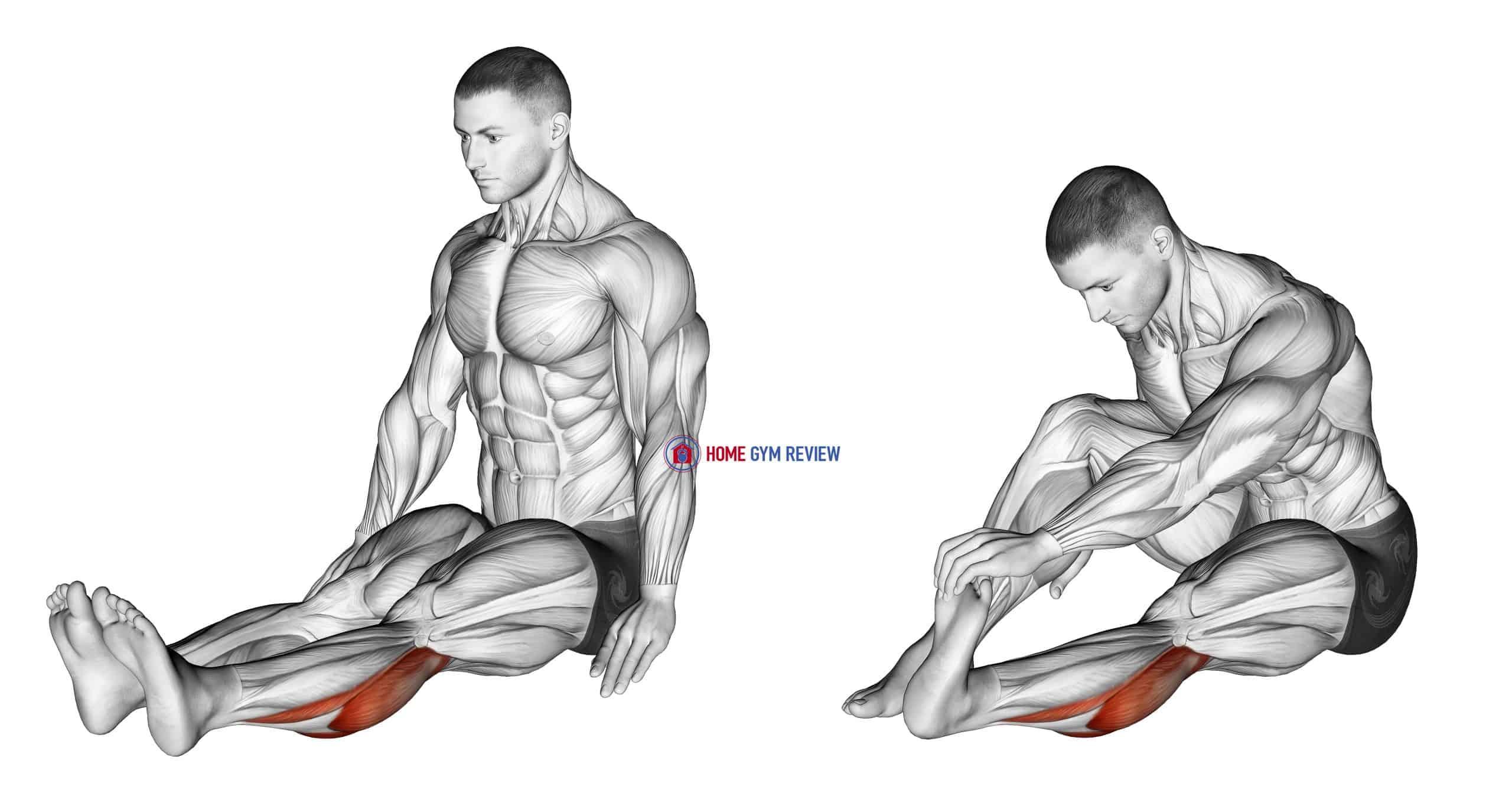 Seated Calf Stretch (male)
