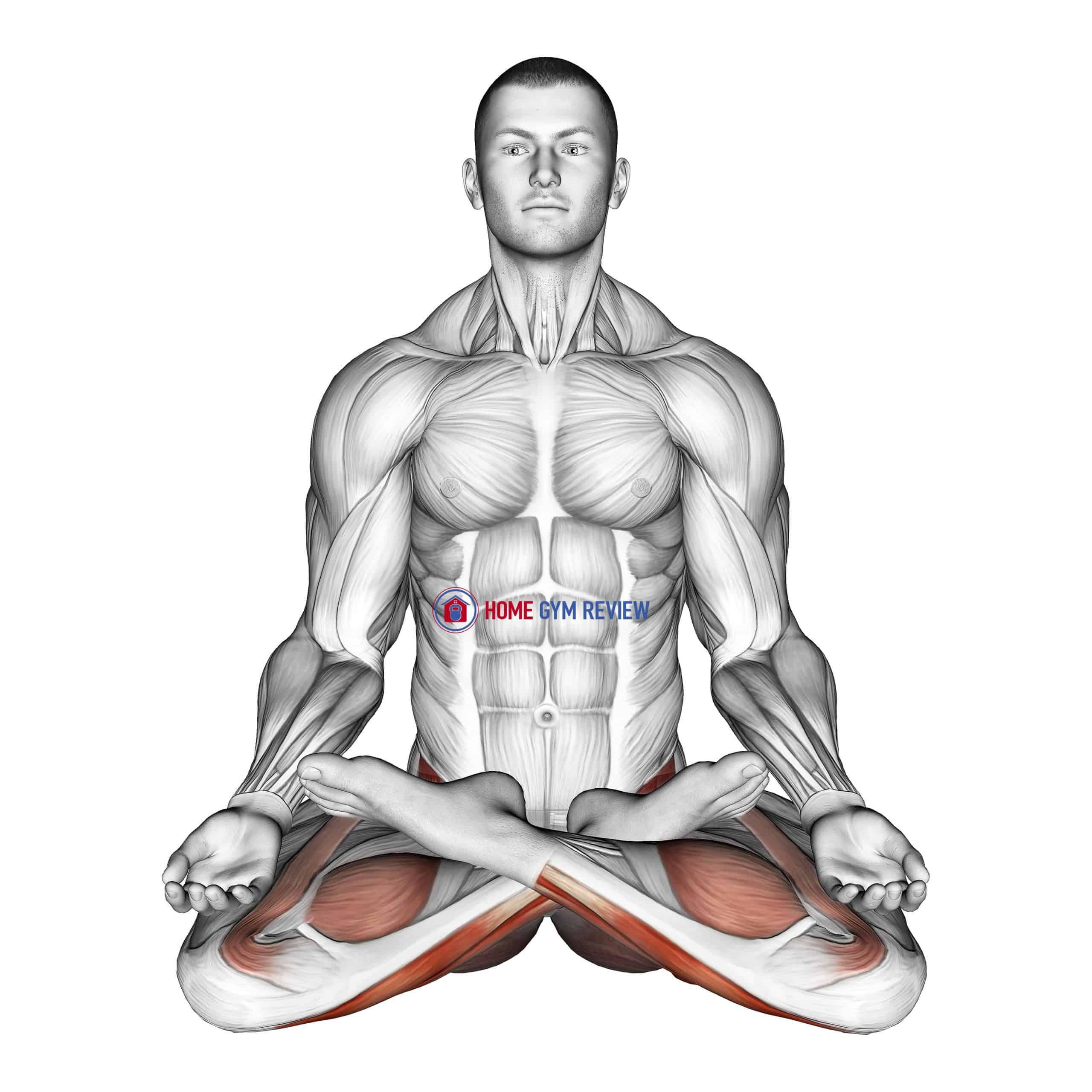 Full Lotus Yoga Pose