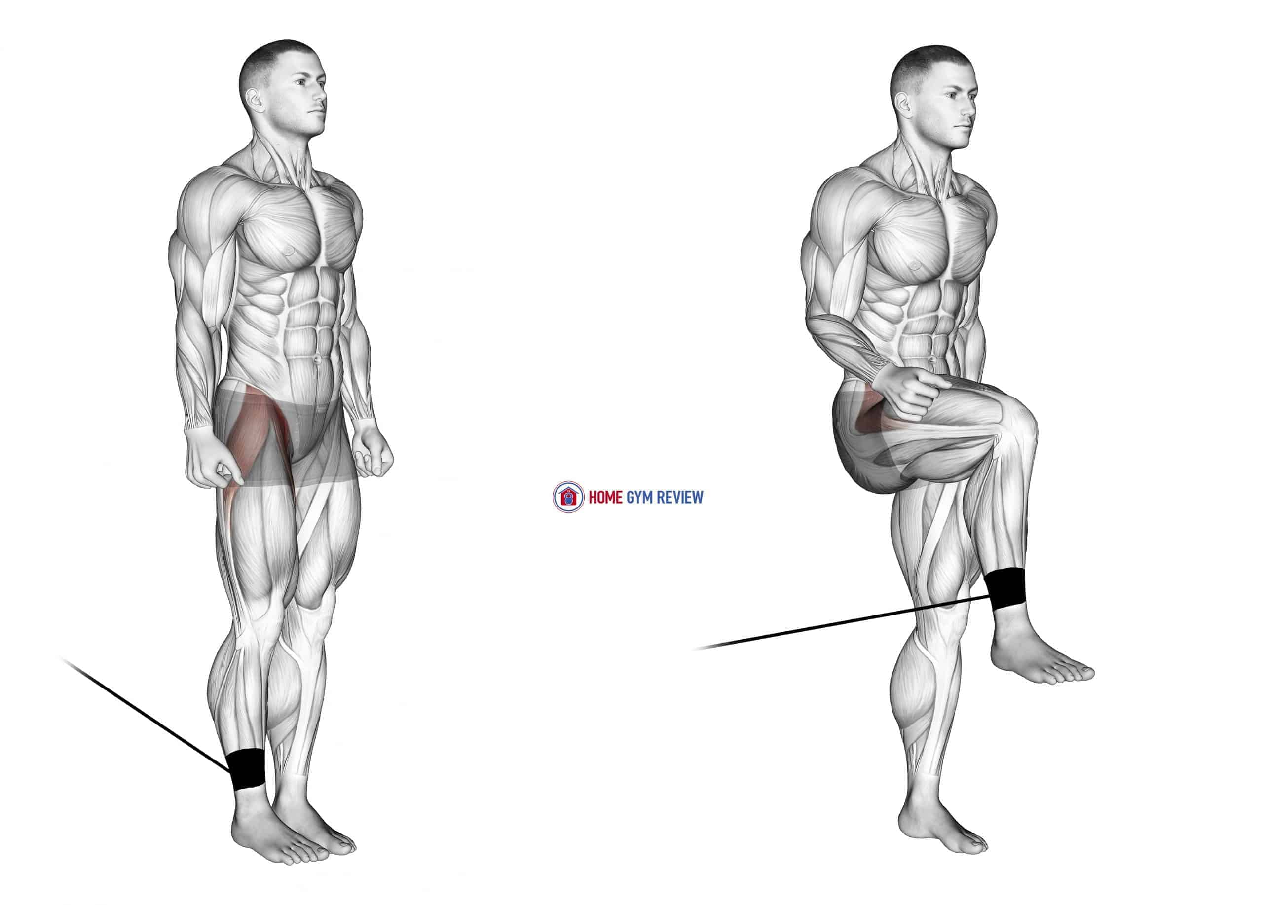 Band Hip Flexion