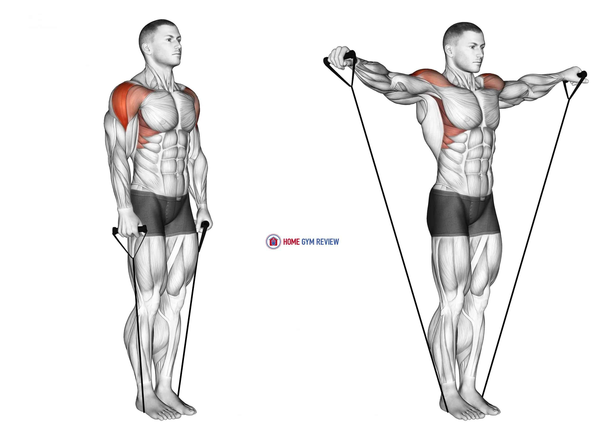 Band Lateral Raise (Version 2)