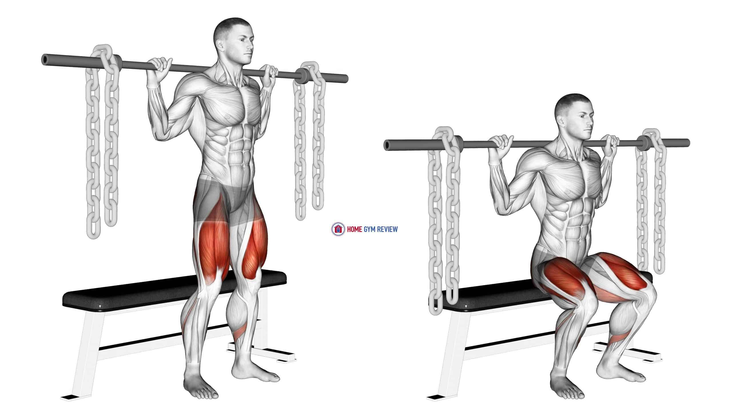Barbell Bench Squat (With chains)