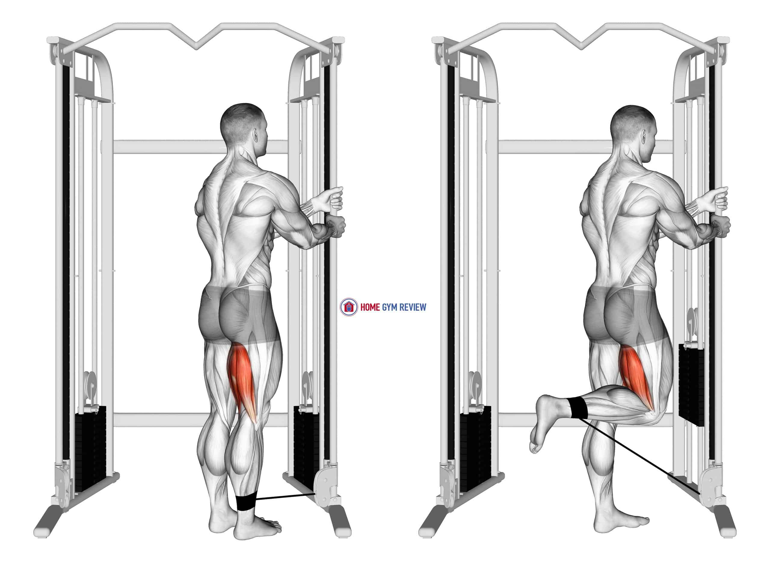 Cable Standing Leg Curl