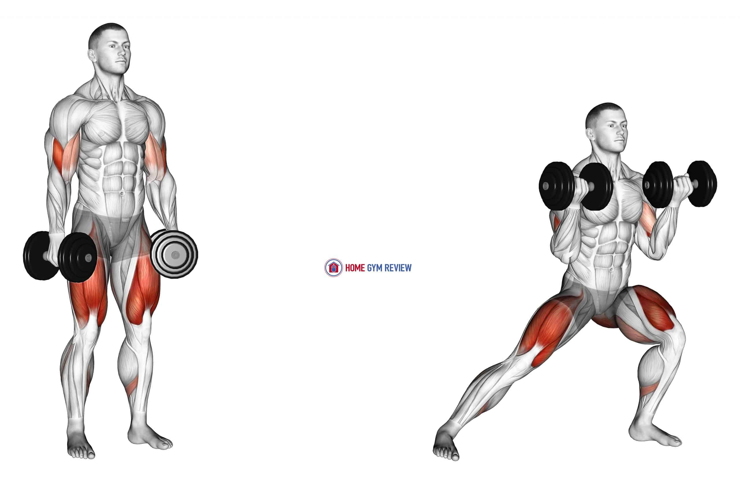 Dumbbell Lateral Lunge with Bicep Curl