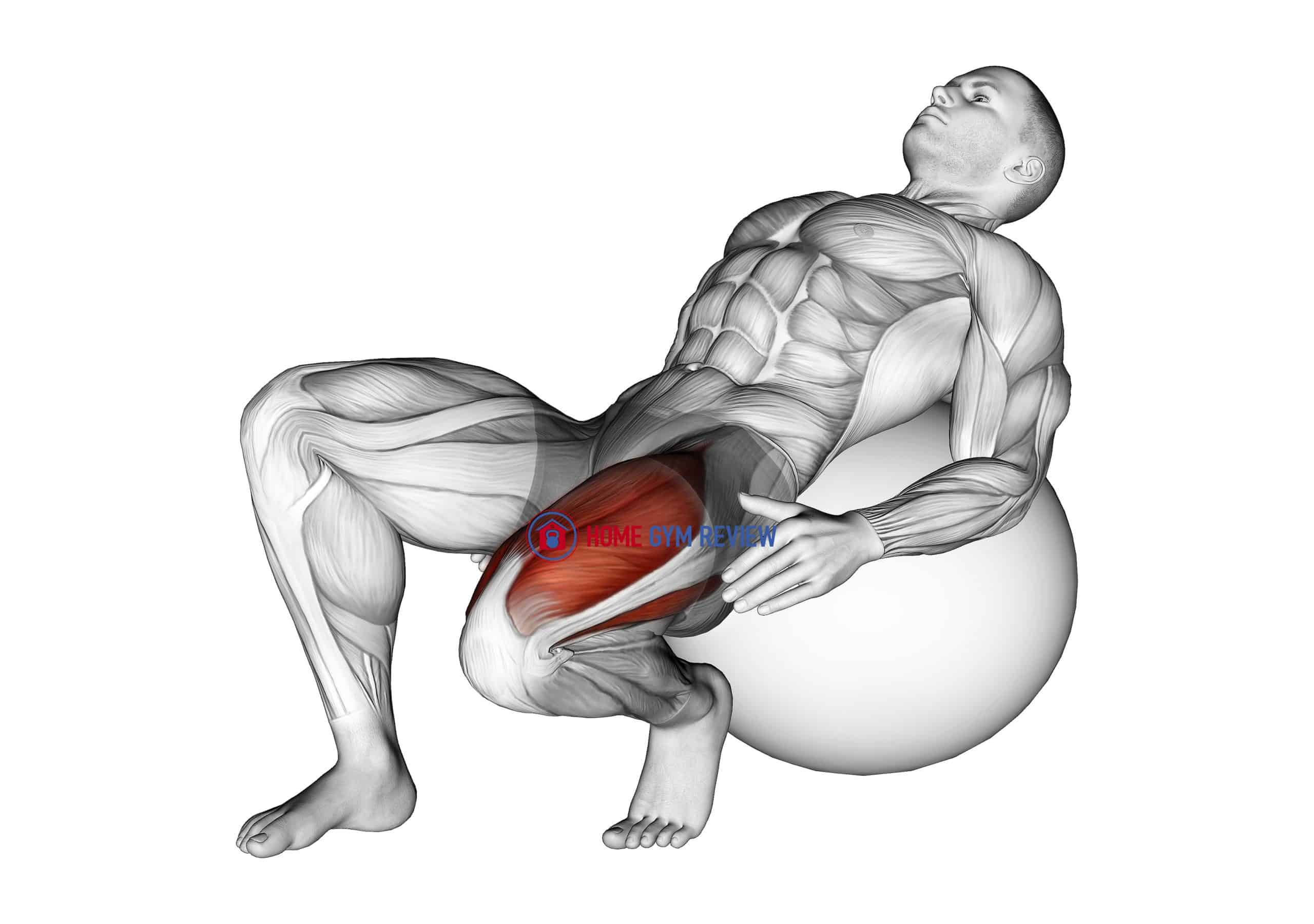 Exercise Ball Seated Quad Stretch