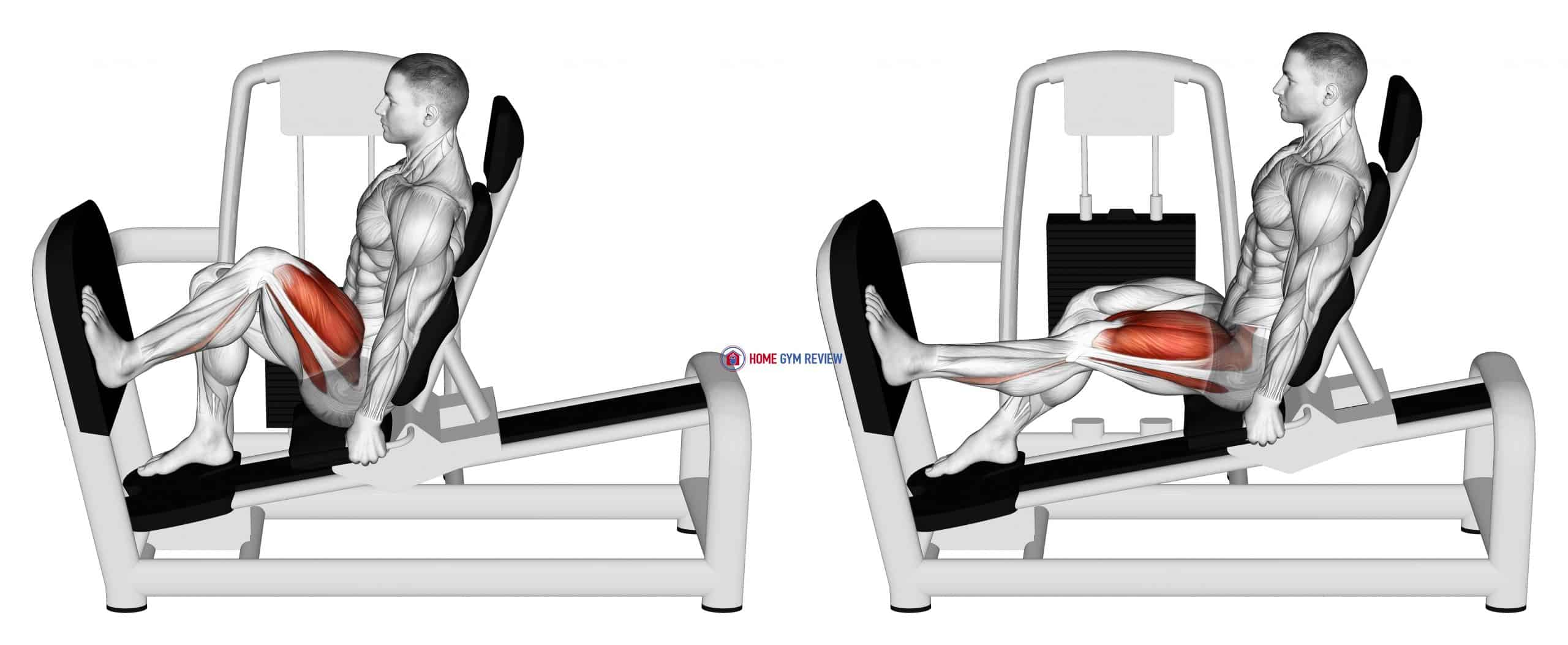 Lever Seated One Leg Wide Squat