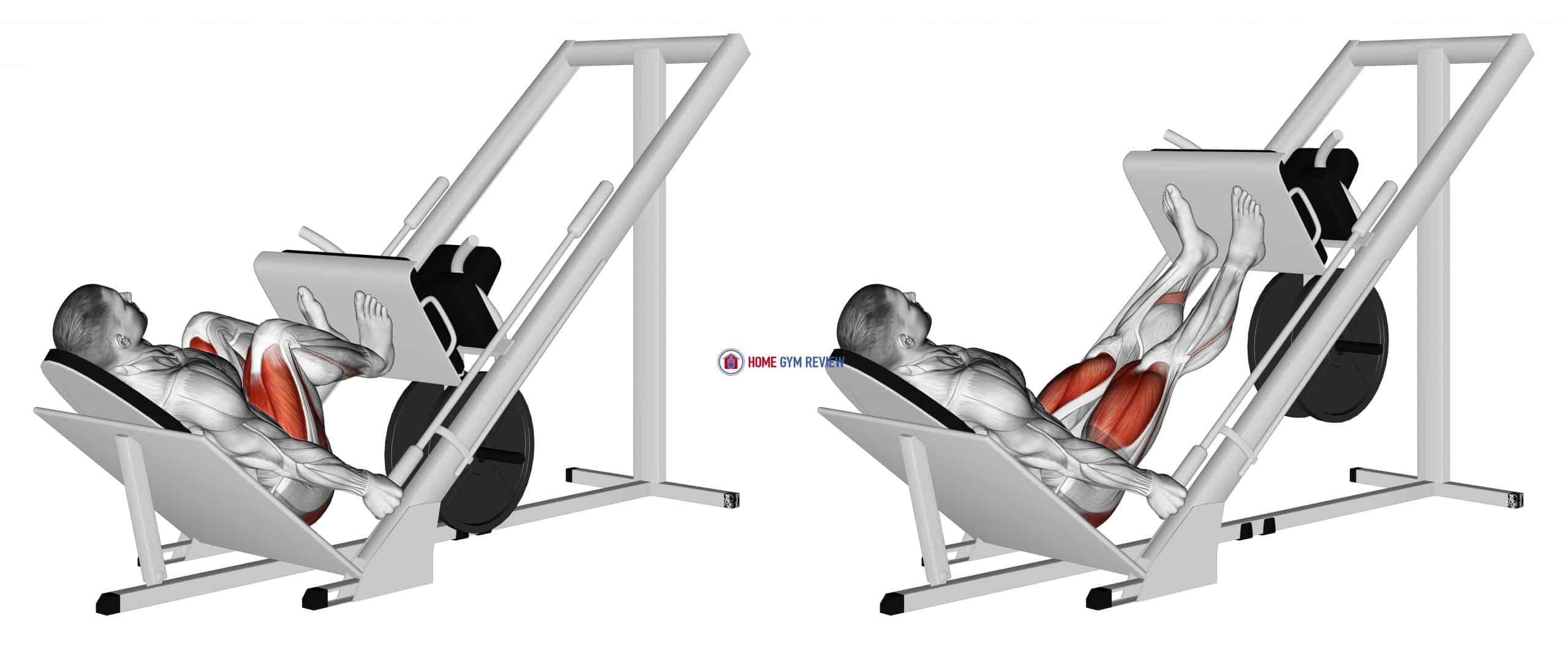 Sled 45ø Narrow Stance Leg Press