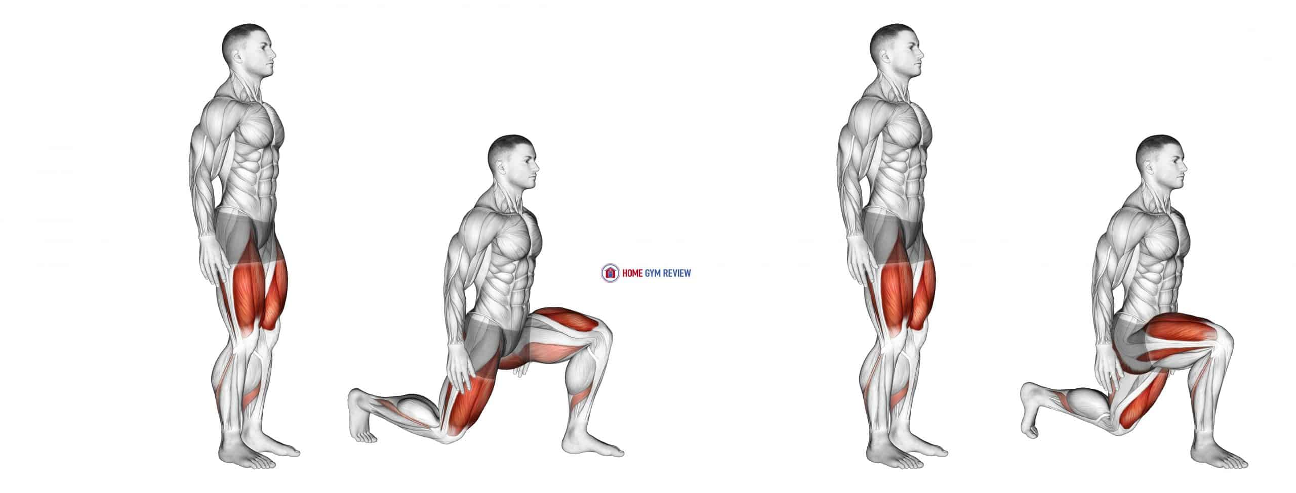 Bodyweight Rear Lunge