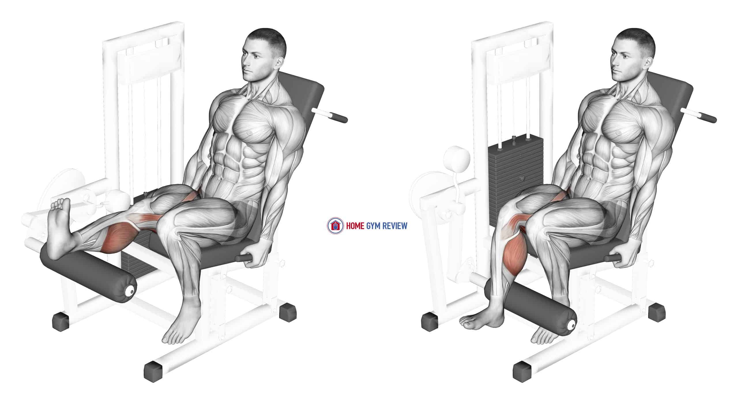 Lever Seated One Leg Curl